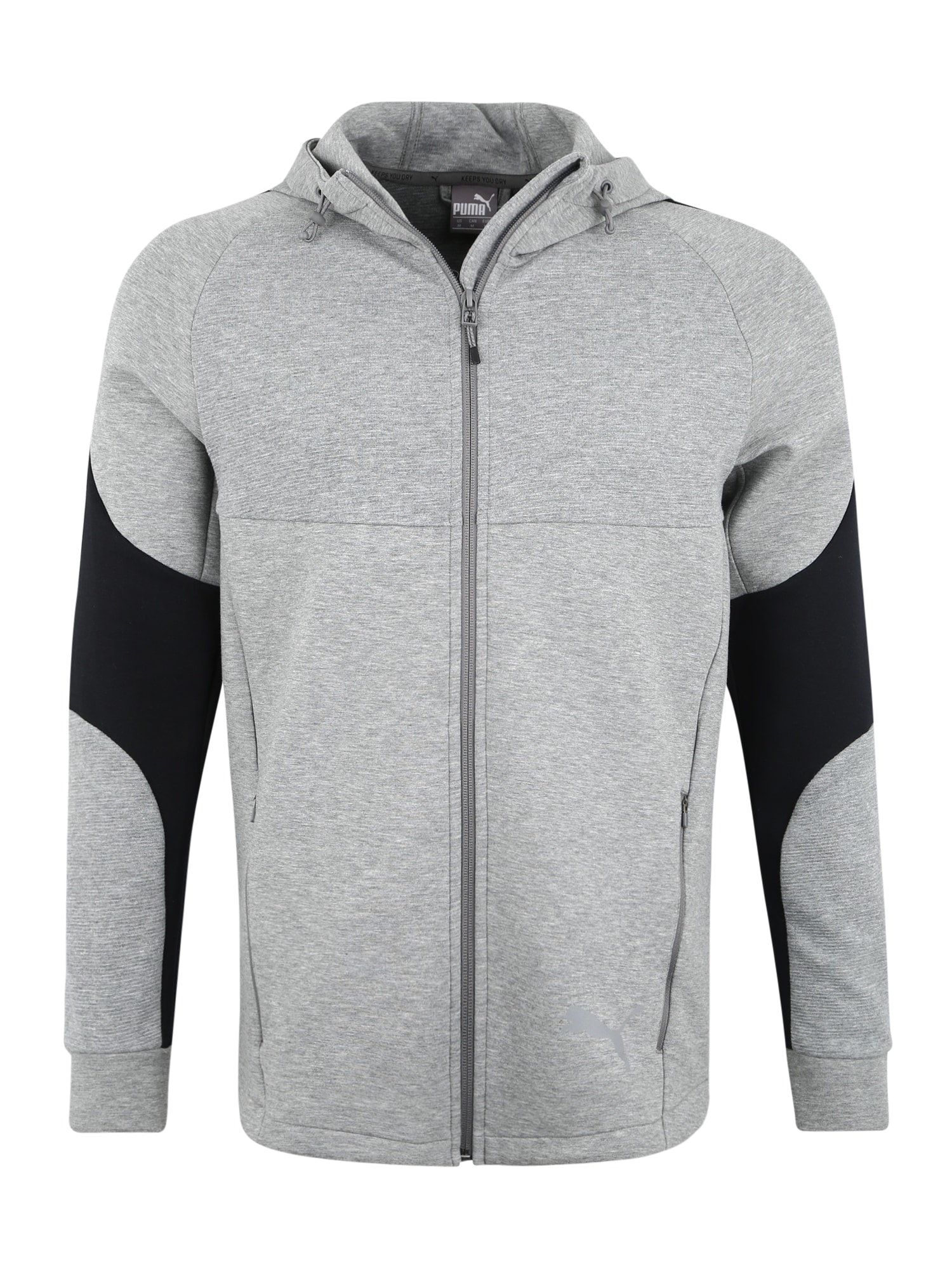 Sportsweatshirt 'Evostripe FZ' | Sportbekleidung > Sportshirts | Grau - Schwarz | Puma