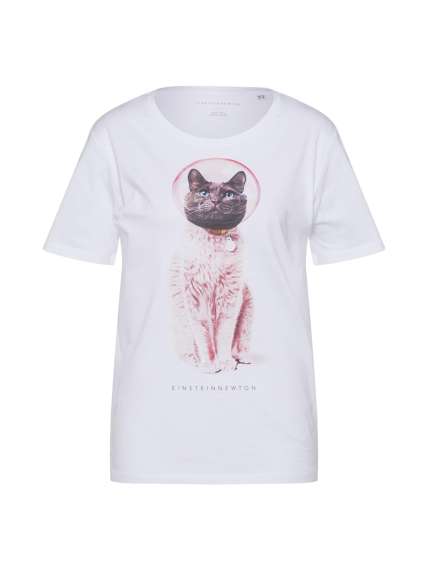 Tričko Astro Cat šedá starorůžová bílá EINSTEIN & NEWTON