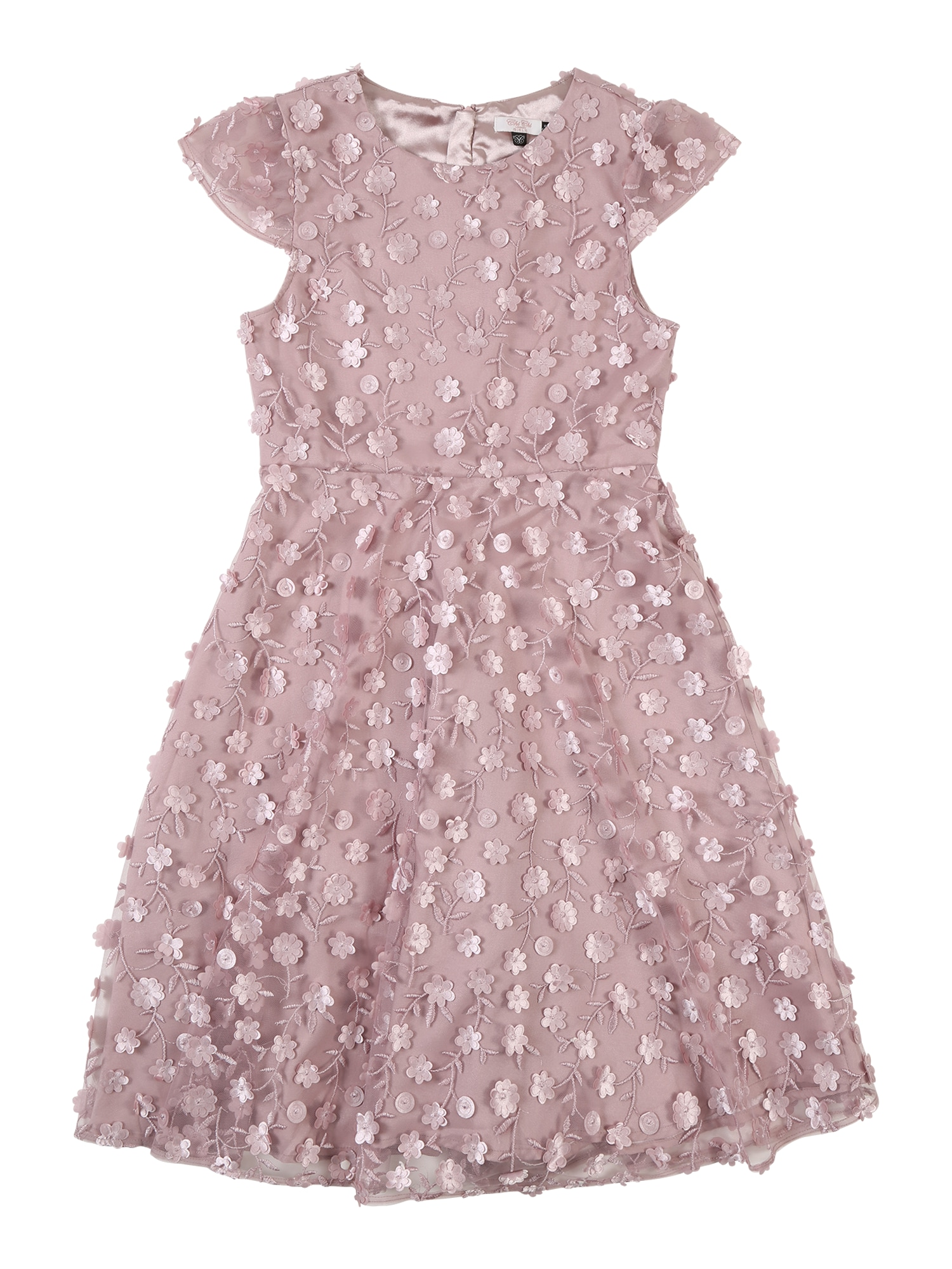Šaty Lolly růže Chi Chi Girls