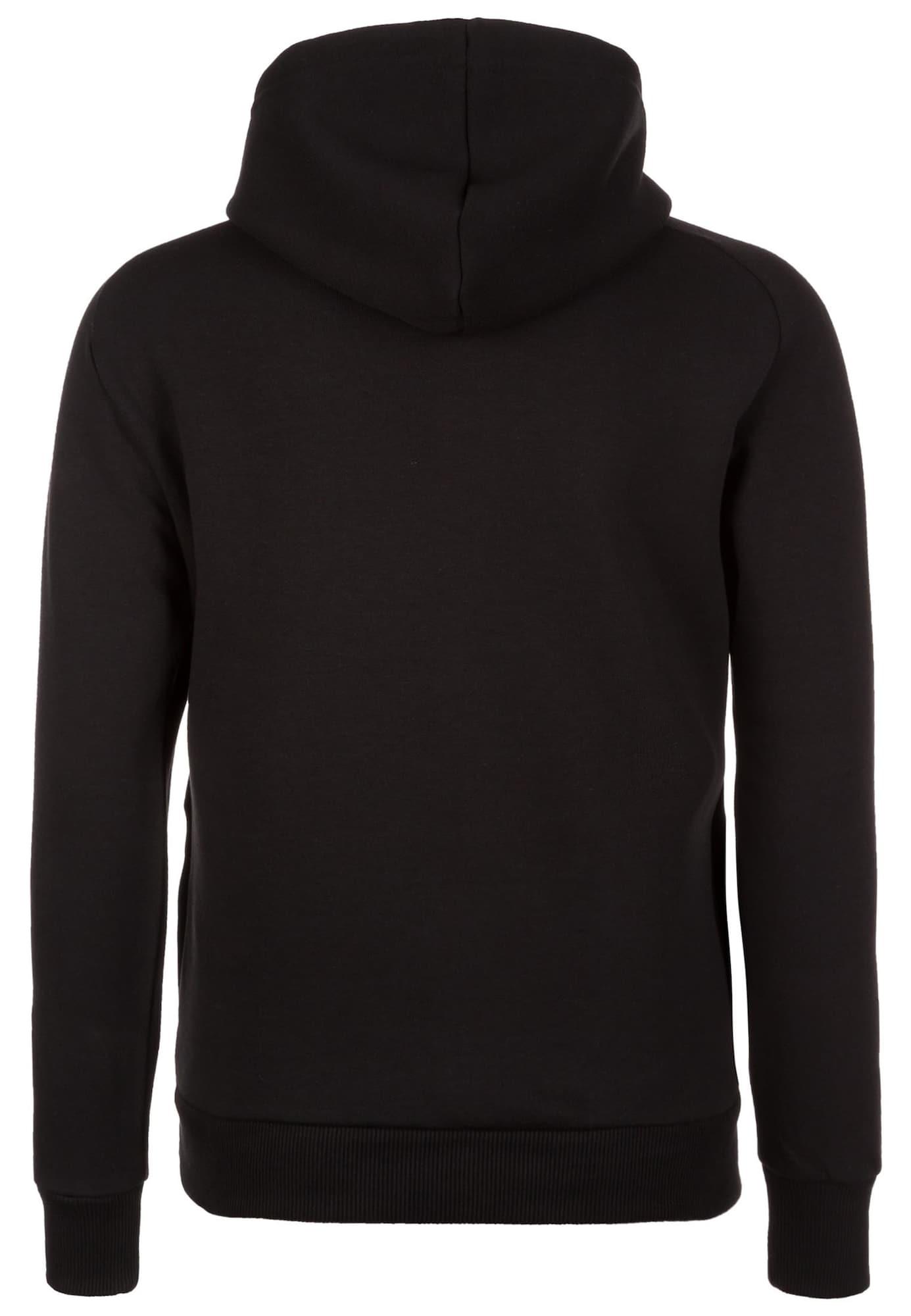 Sportief sweatshirt 'Borussia Dortmund Fanwear'
