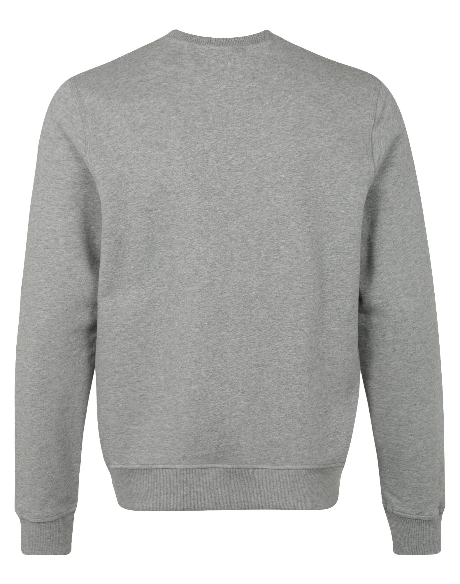 DICKIES, Heren Sweatshirt 'Harrison', grijs