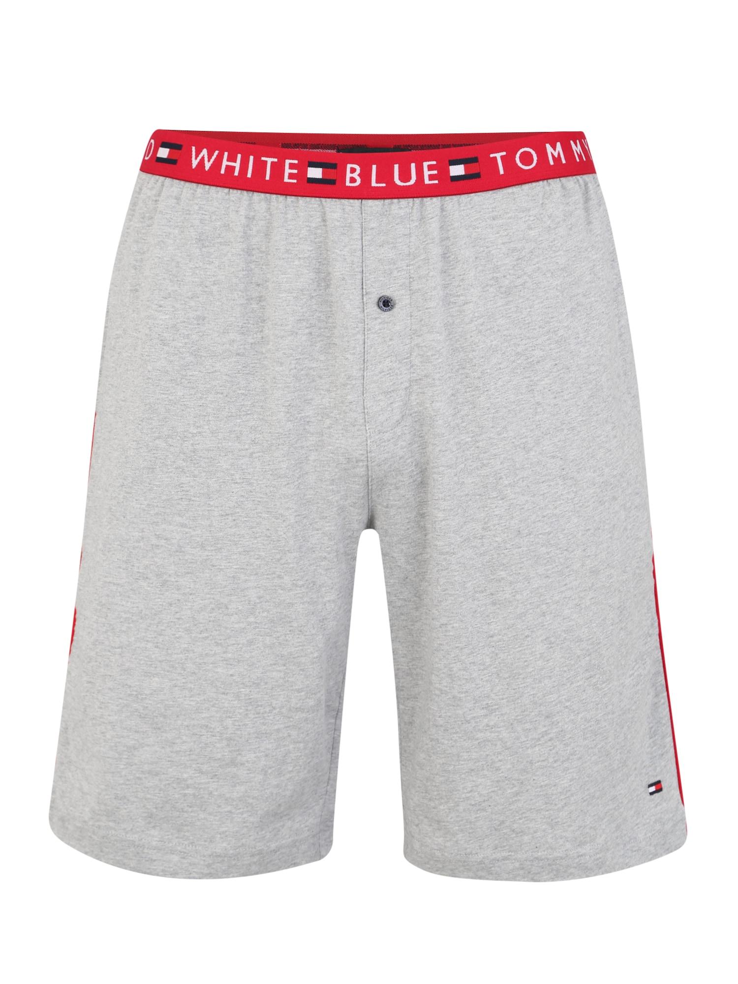 Dlouhé spodky JERSEY SHORT šedá Tommy Hilfiger Underwear