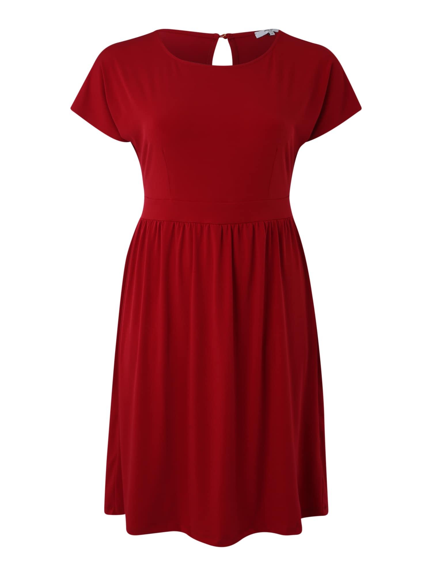 Šaty Tara červená ABOUT YOU Curvy