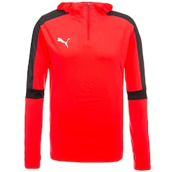 IT evoTRG Trainingskapuzenpullover