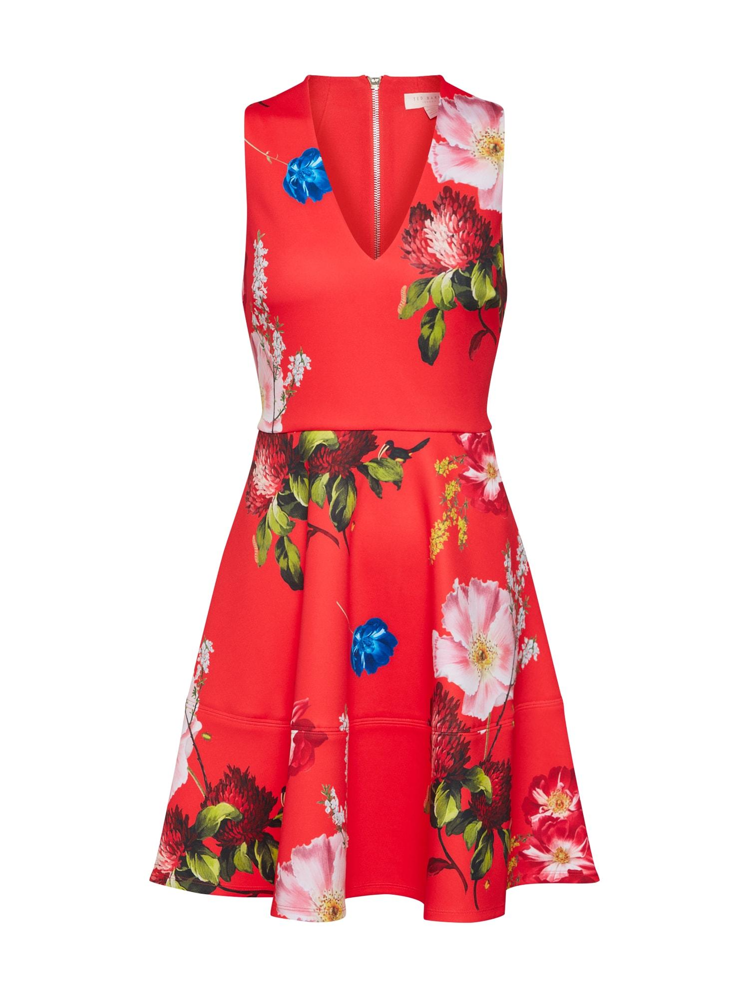 Šaty Kinle mix barev červená Ted Baker