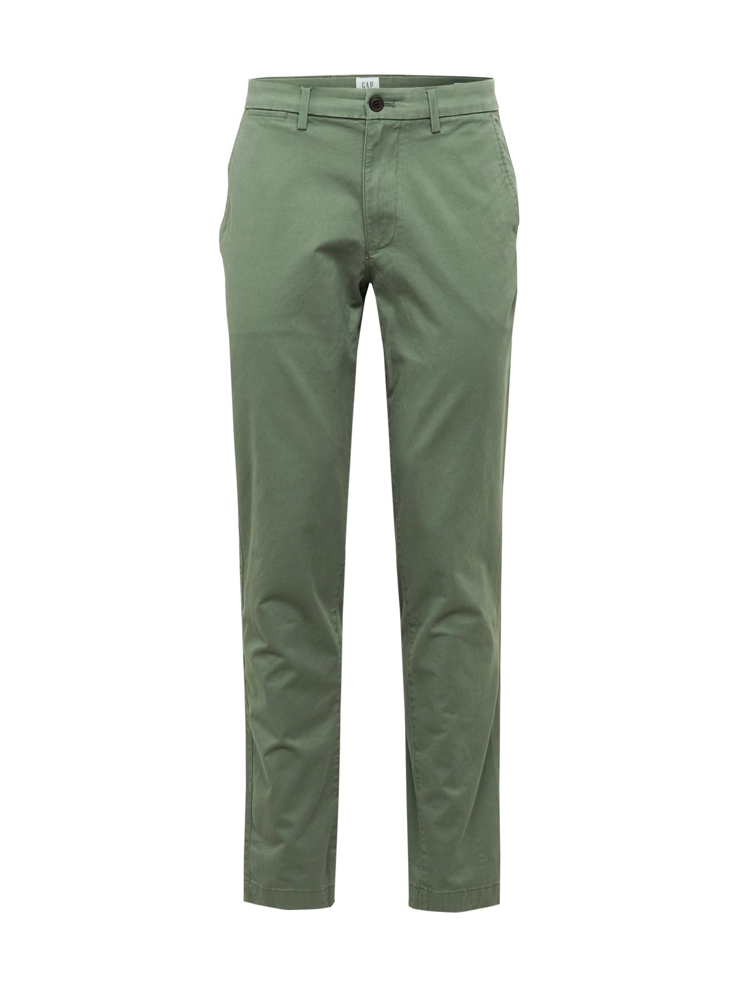 GAP Chino kalhoty 'V-ESSENTIAL'  olivová