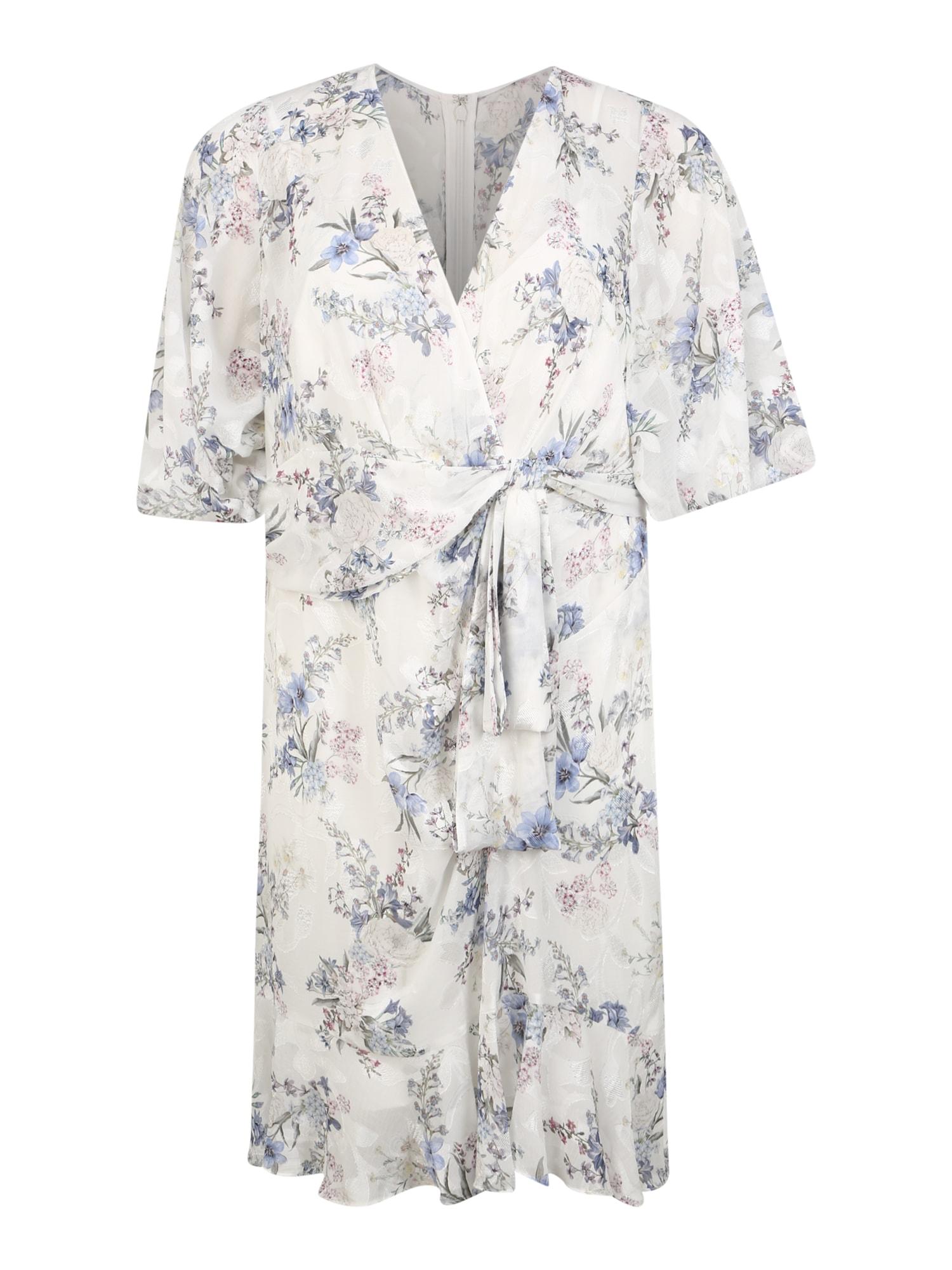 Forever New Vasarinė suknelė mišrios spalvos / balta