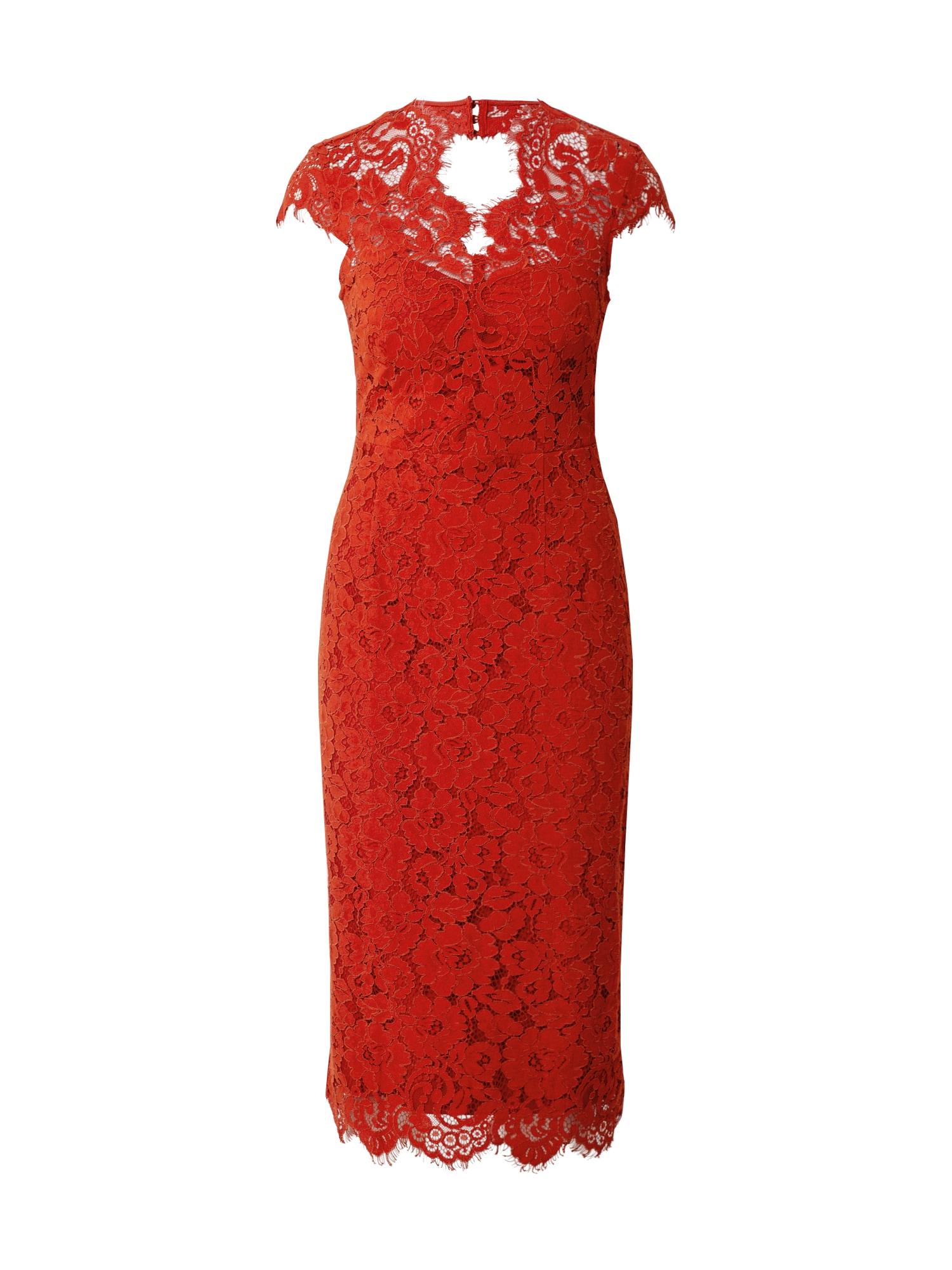 IVY & OAK Suknelė raudona