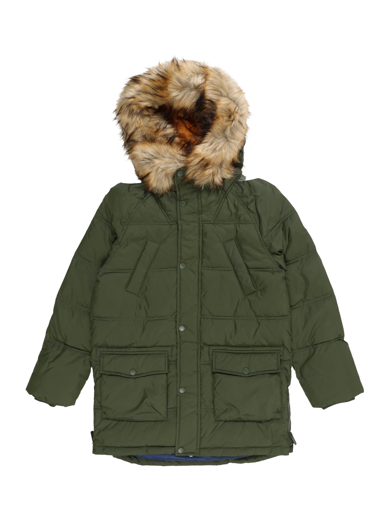 Pepe Jeans Žieminė striukė 'DUTCHMAN' žalia