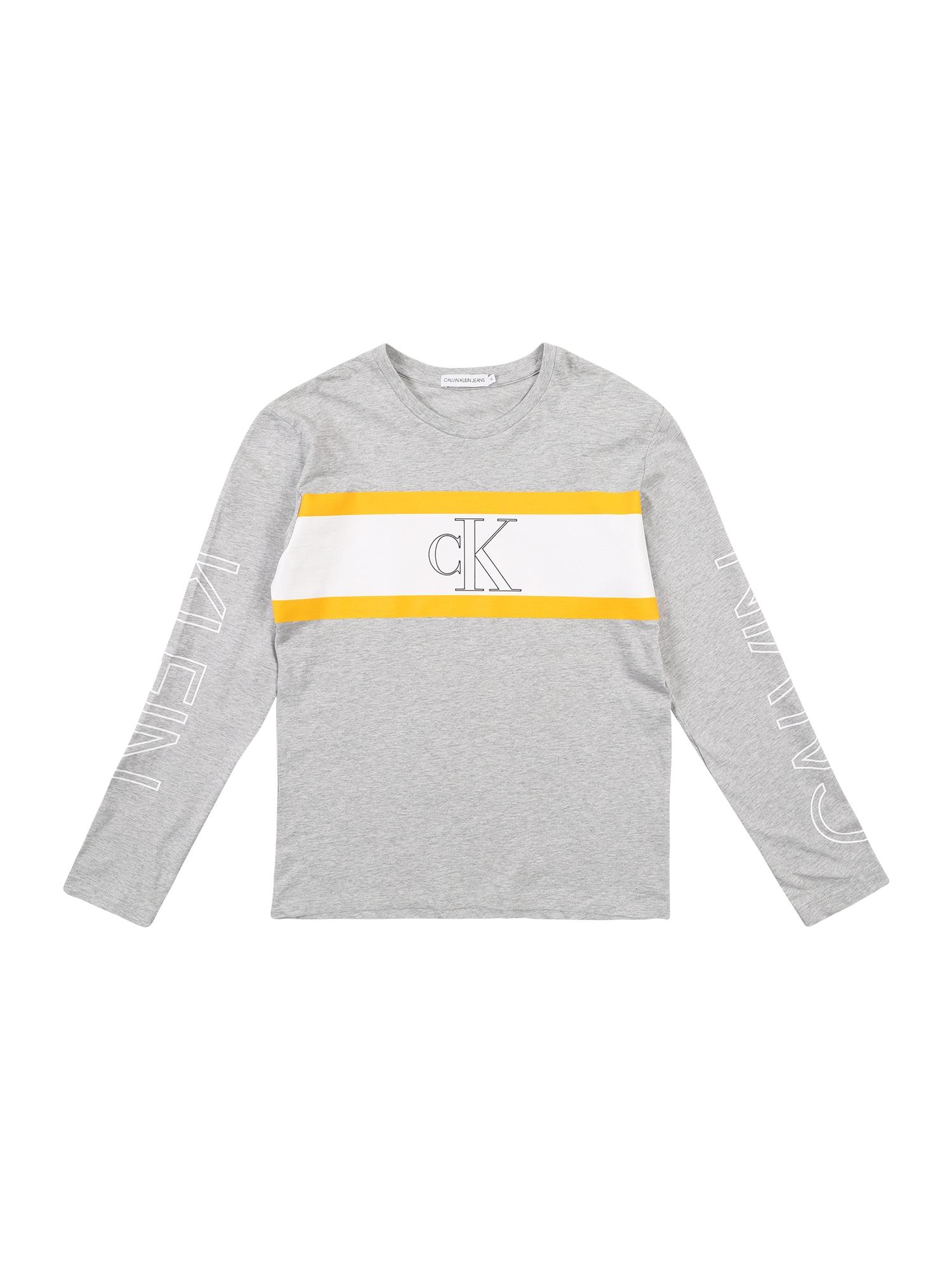 Calvin Klein Jeans Marškinėliai 'LOGO COLOUR BLOCK LS' margai pilka