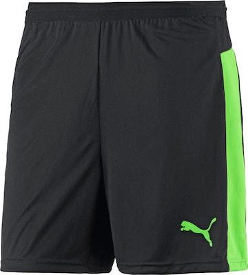 PUMA Shorts 'IT EVO'