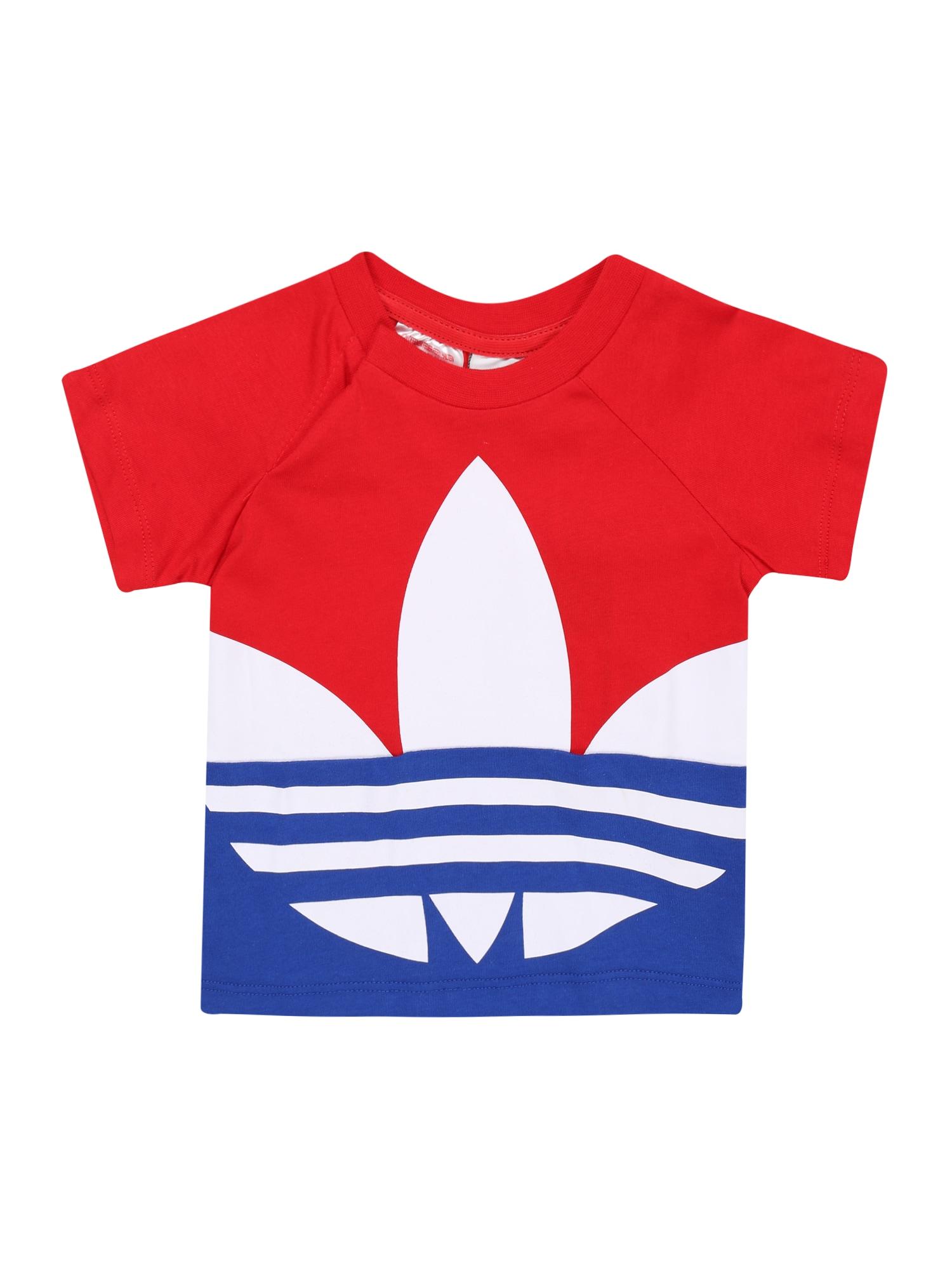 ADIDAS ORIGINALS Tričko 'BIG TREFOIL TEE'  červené