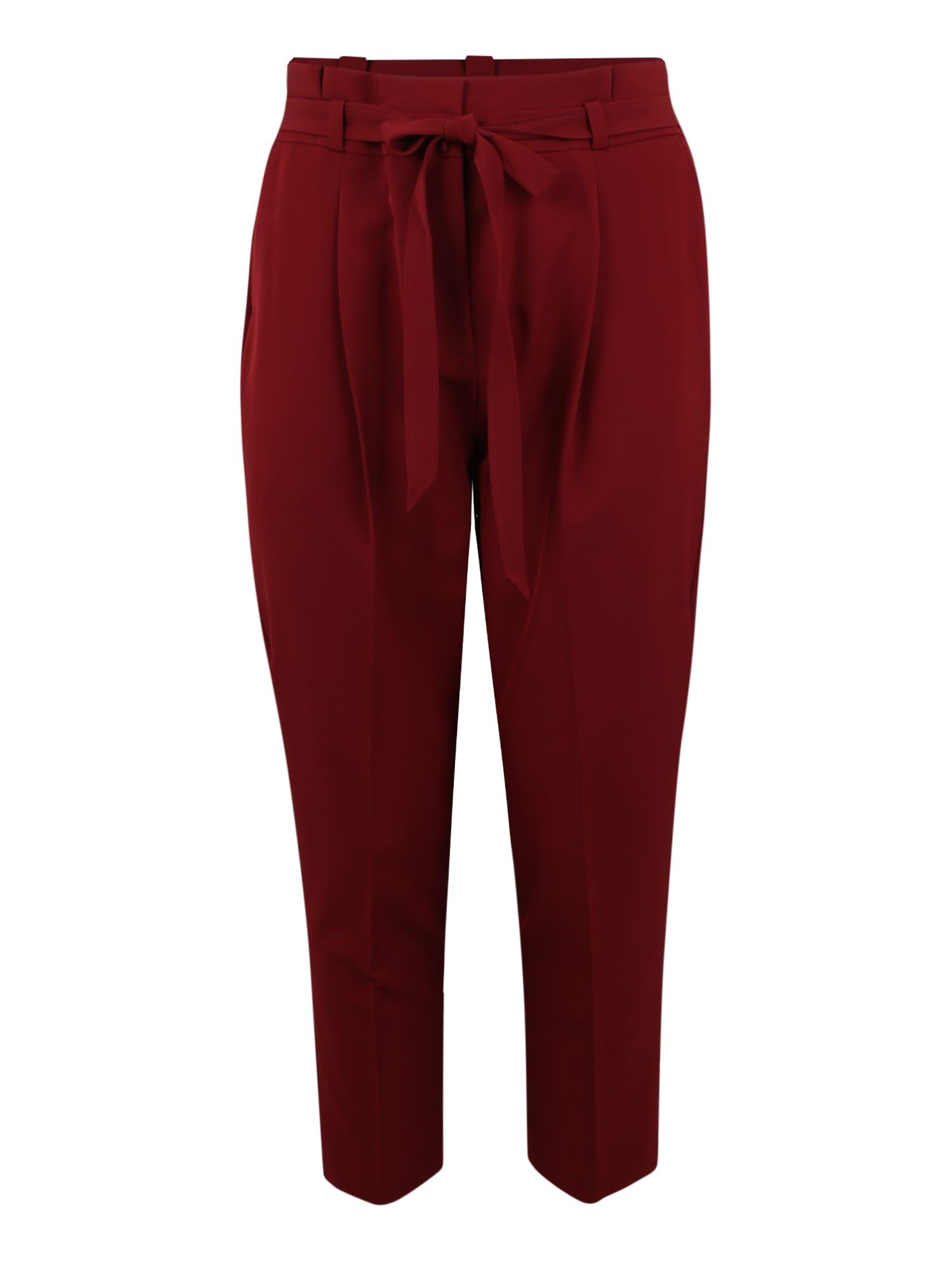 Kalhoty se sklady v pase MILLER  burgundská červeň New Look Curves