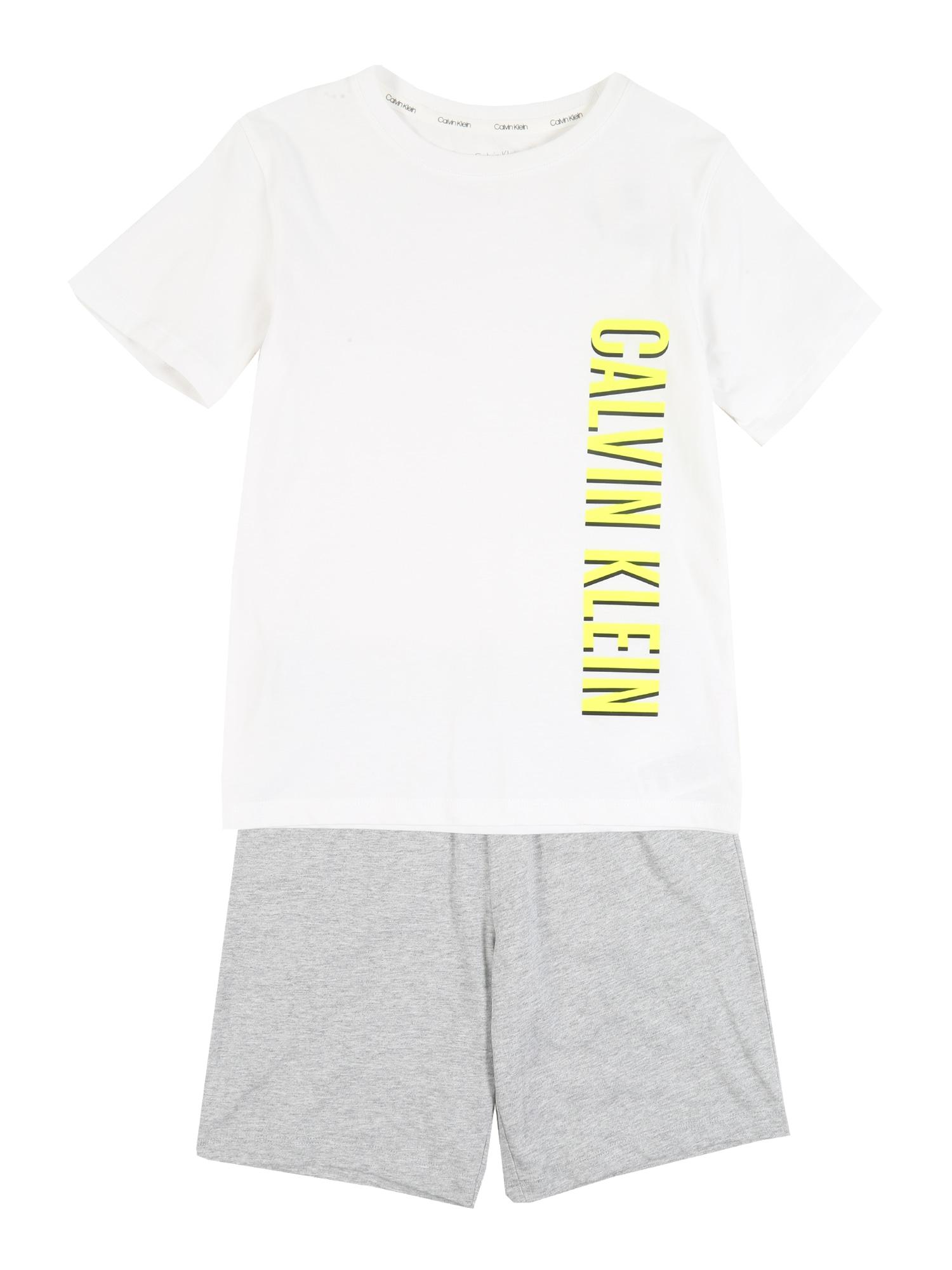 Calvin Klein Underwear Miego kostiumas margai pilka / balta