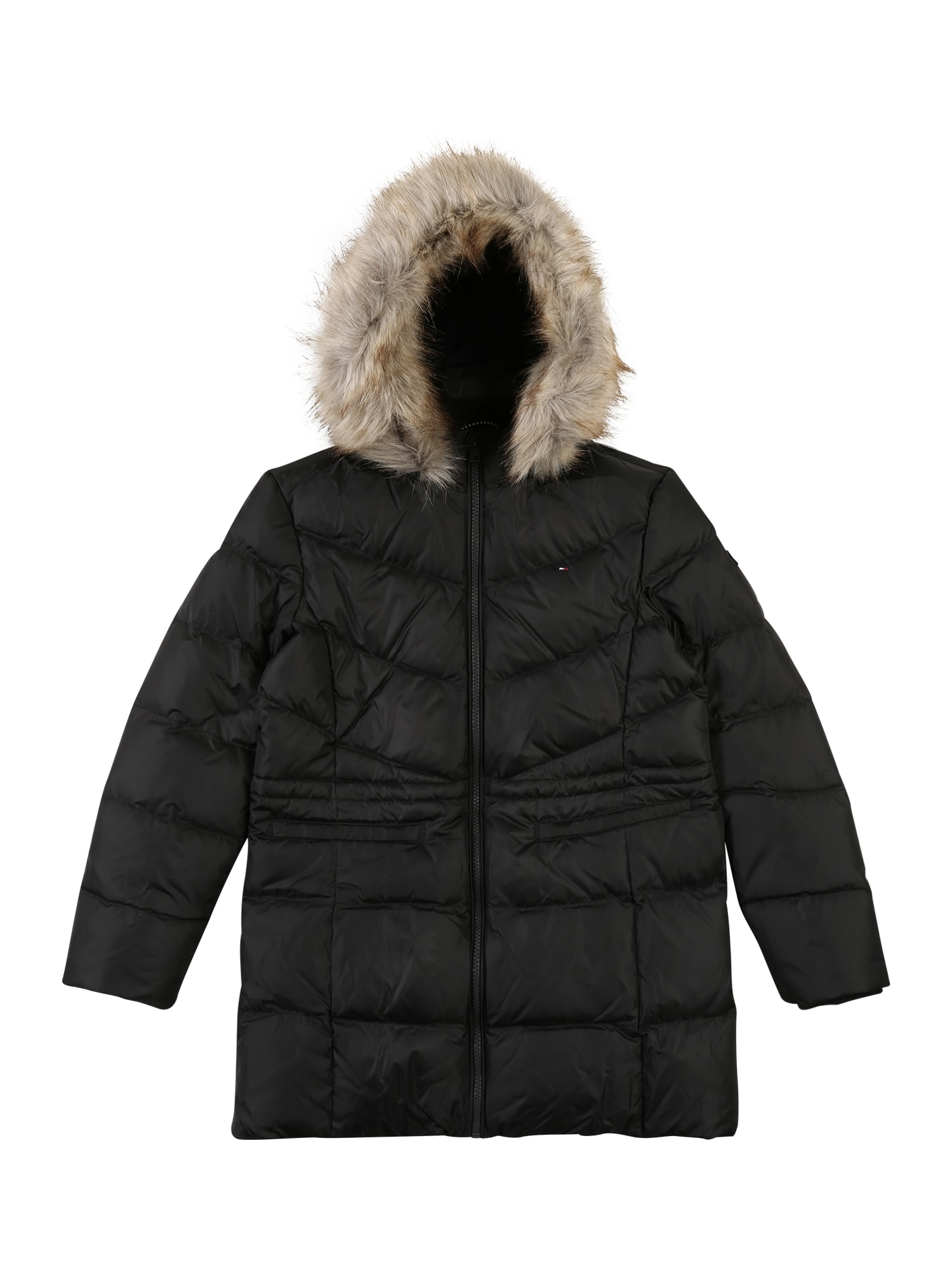 TOMMY HILFIGER Zimná bunda 'DG ESSENTIAL DOWN COAT'  čierna