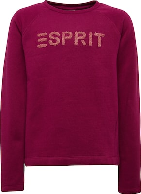 ESPRIT Sweatpullover 'SWEAT SHIRT'