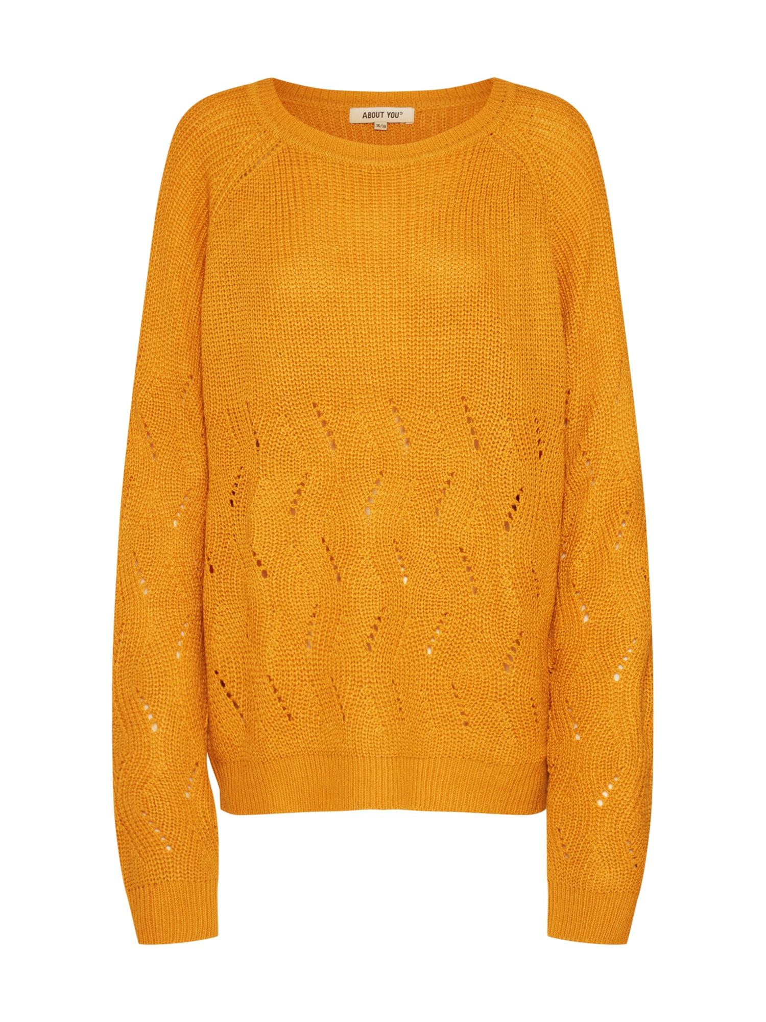 ABOUT YOU Megztinis 'Gunda' garstyčių spalva