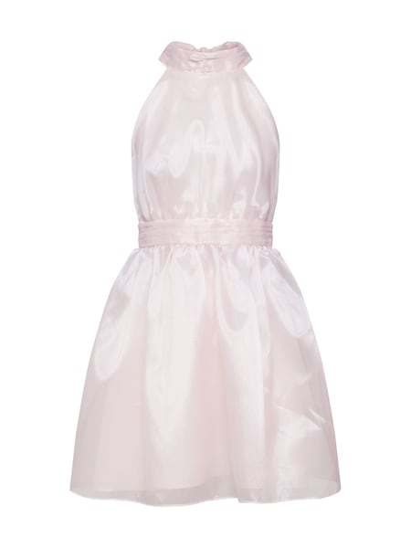 Festtagsmode - Kleid 'SANIRA MINI' › TFNC › pink  - Onlineshop ABOUT YOU