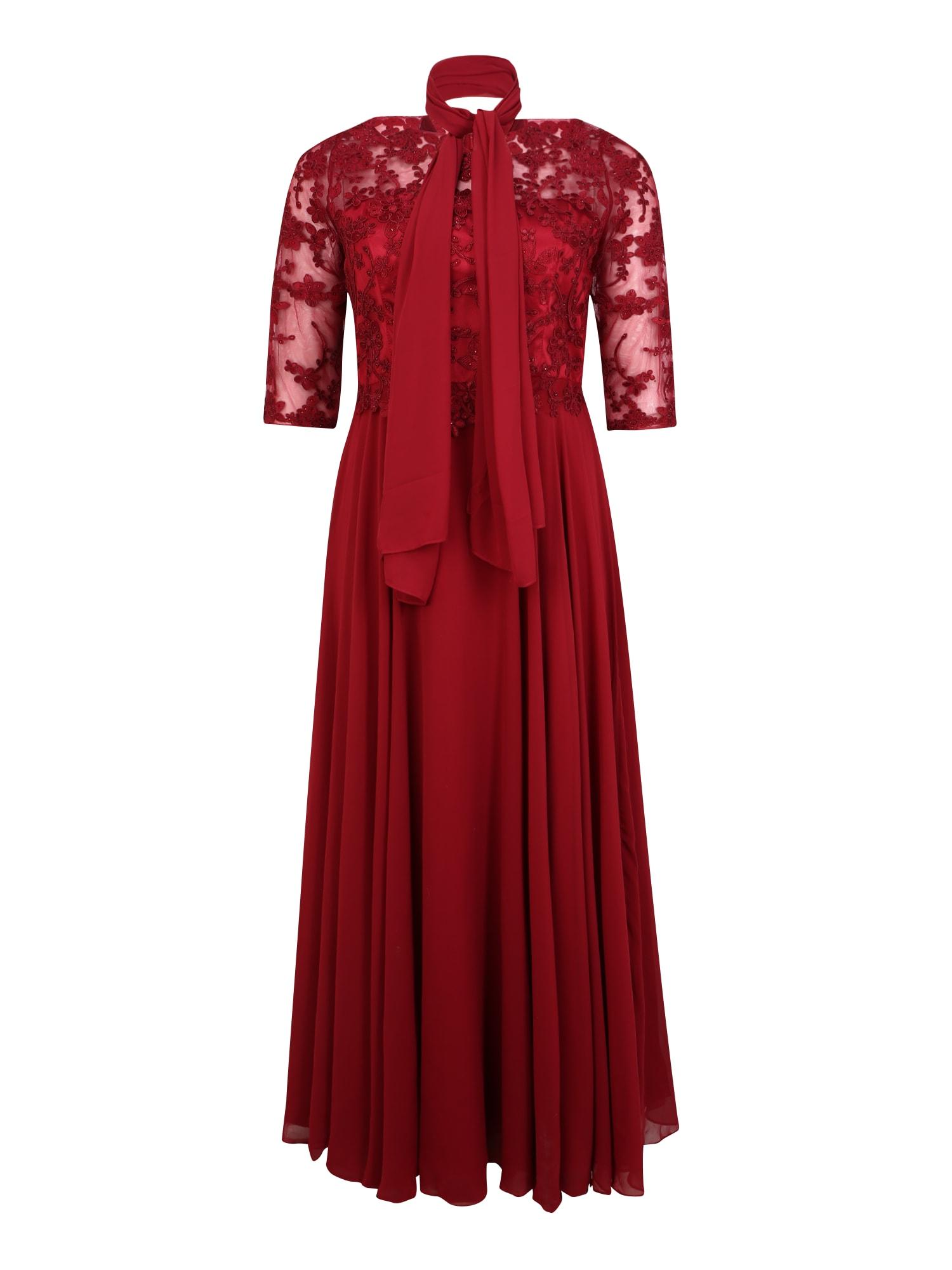 My Mascara Curves Vakarinė suknelė 'EMB Sleeve' vyno raudona spalva