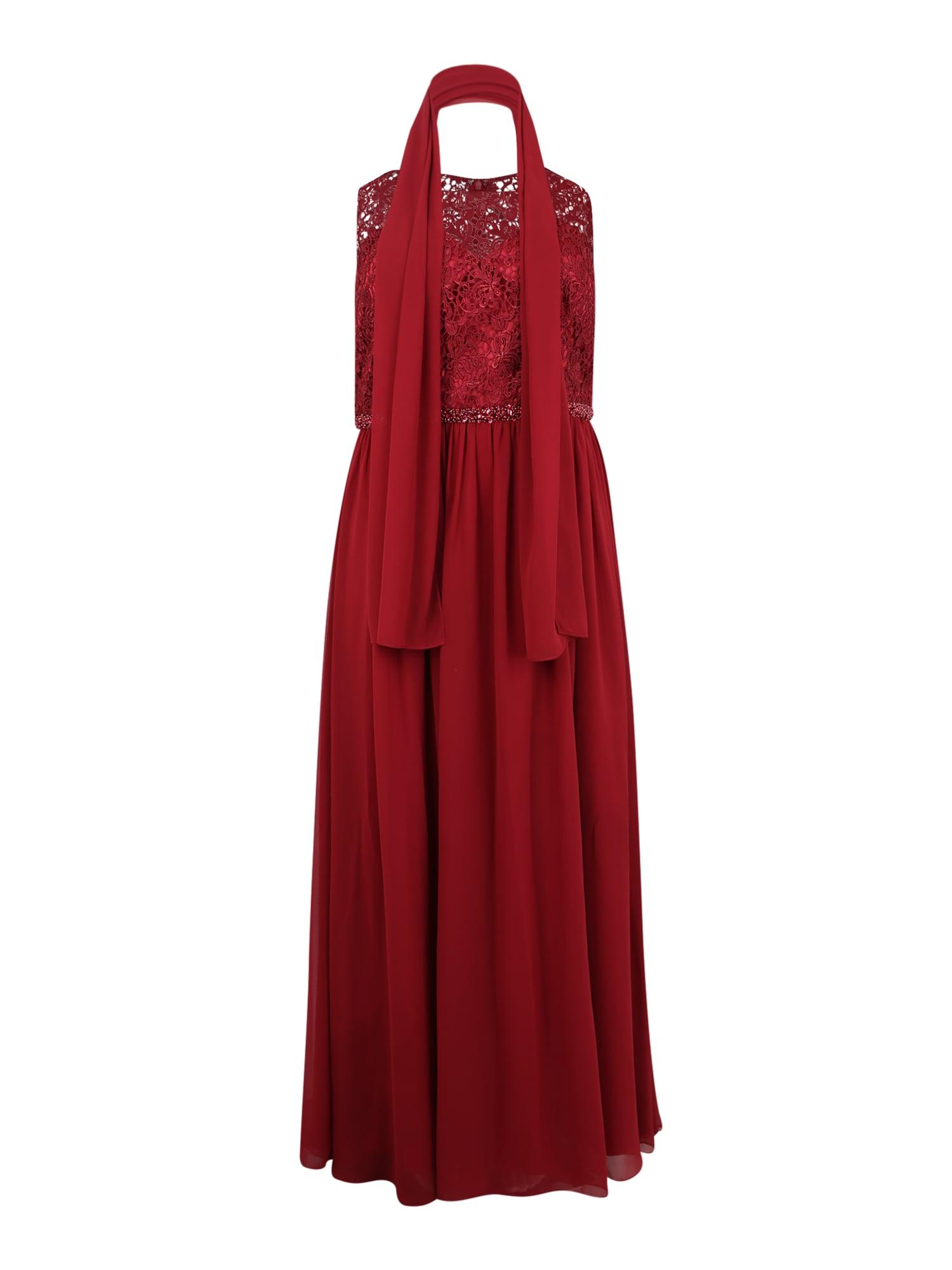 My Mascara Curves Vakarinė suknelė vyno raudona spalva