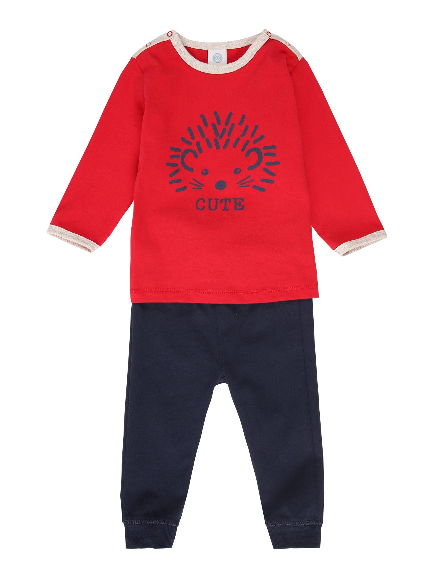 SANETTA Miego kostiumas tamsiai mėlyna / šviesiai raudona