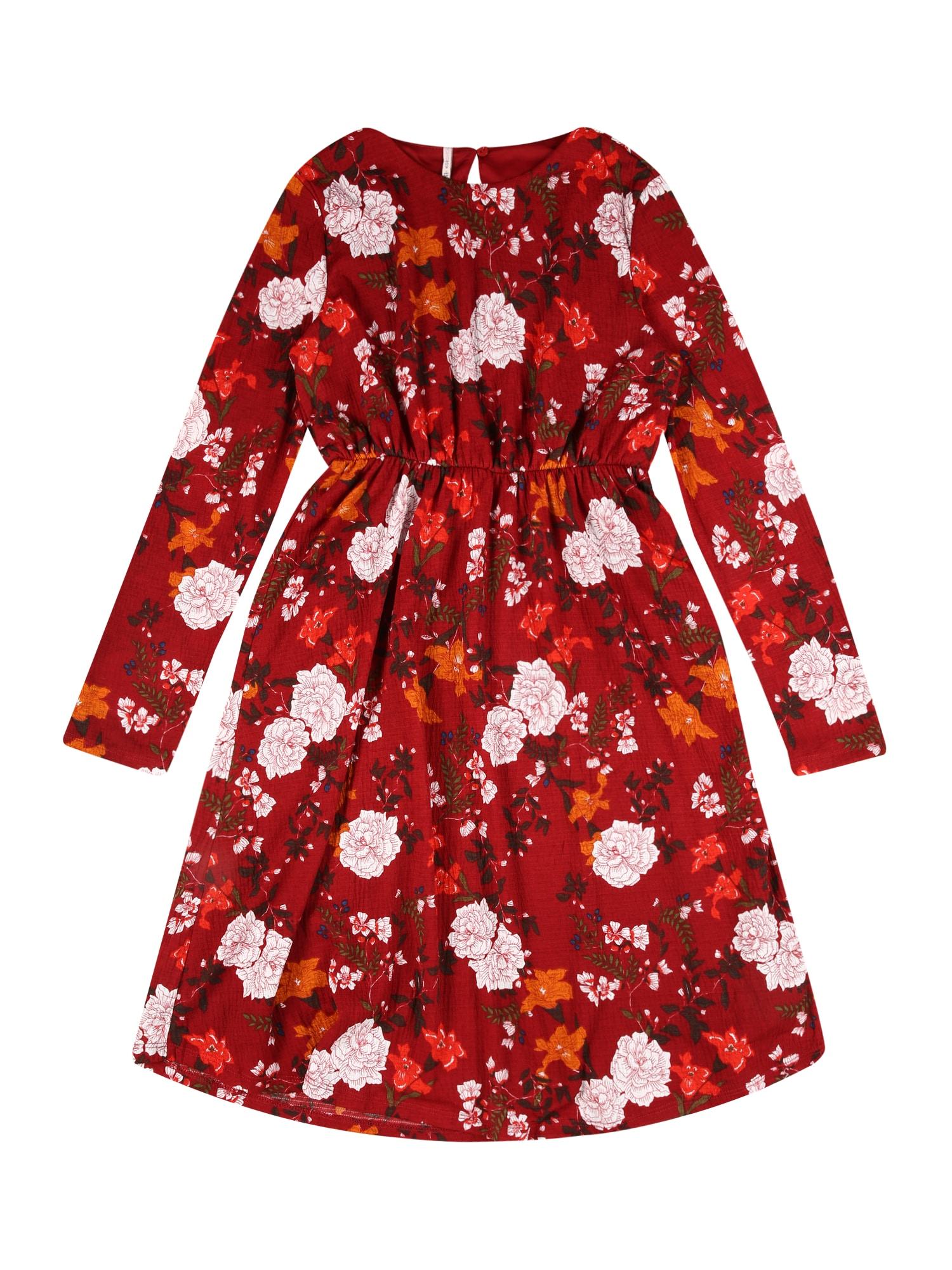KIDS ONLY Suknelė 'PELLA' karmino raudona / mišrios spalvos