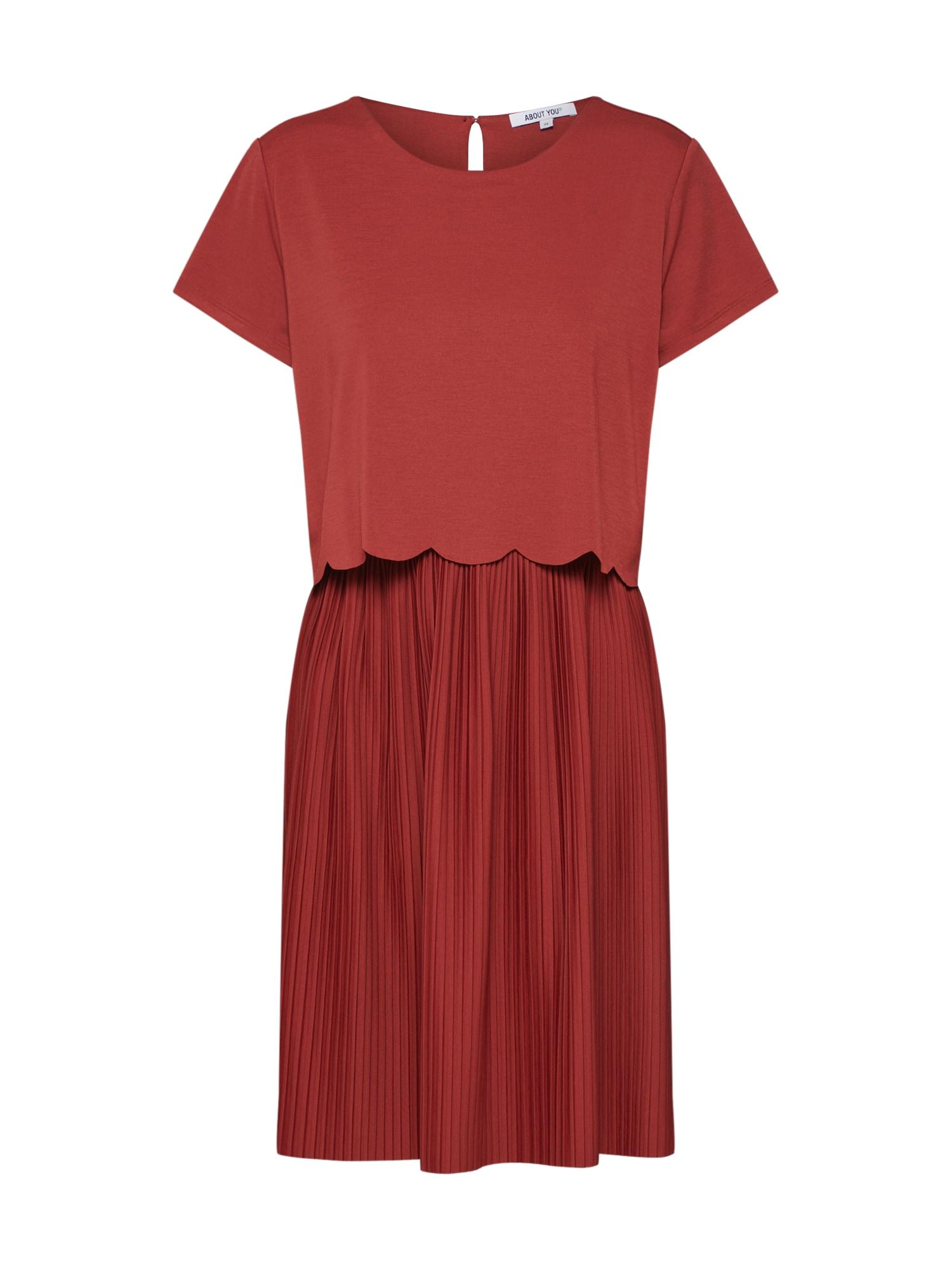 ABOUT YOU Vasarinė suknelė 'Dinah' rūdžių raudona