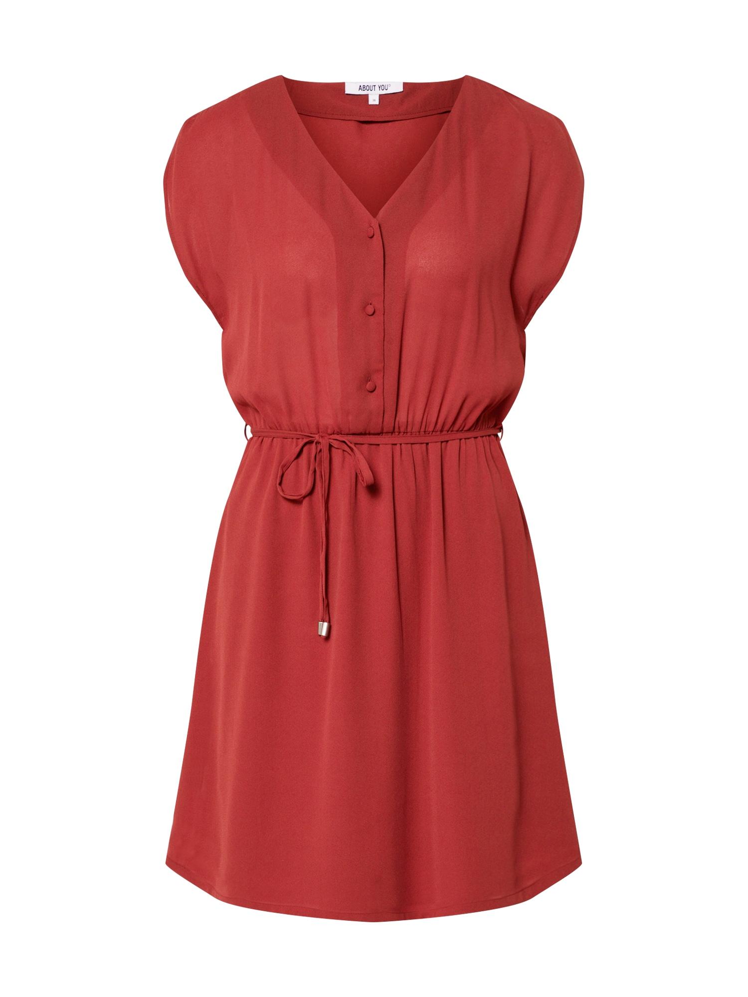 ABOUT YOU Palaidinės tipo suknelė 'Evelin' uogų spalva