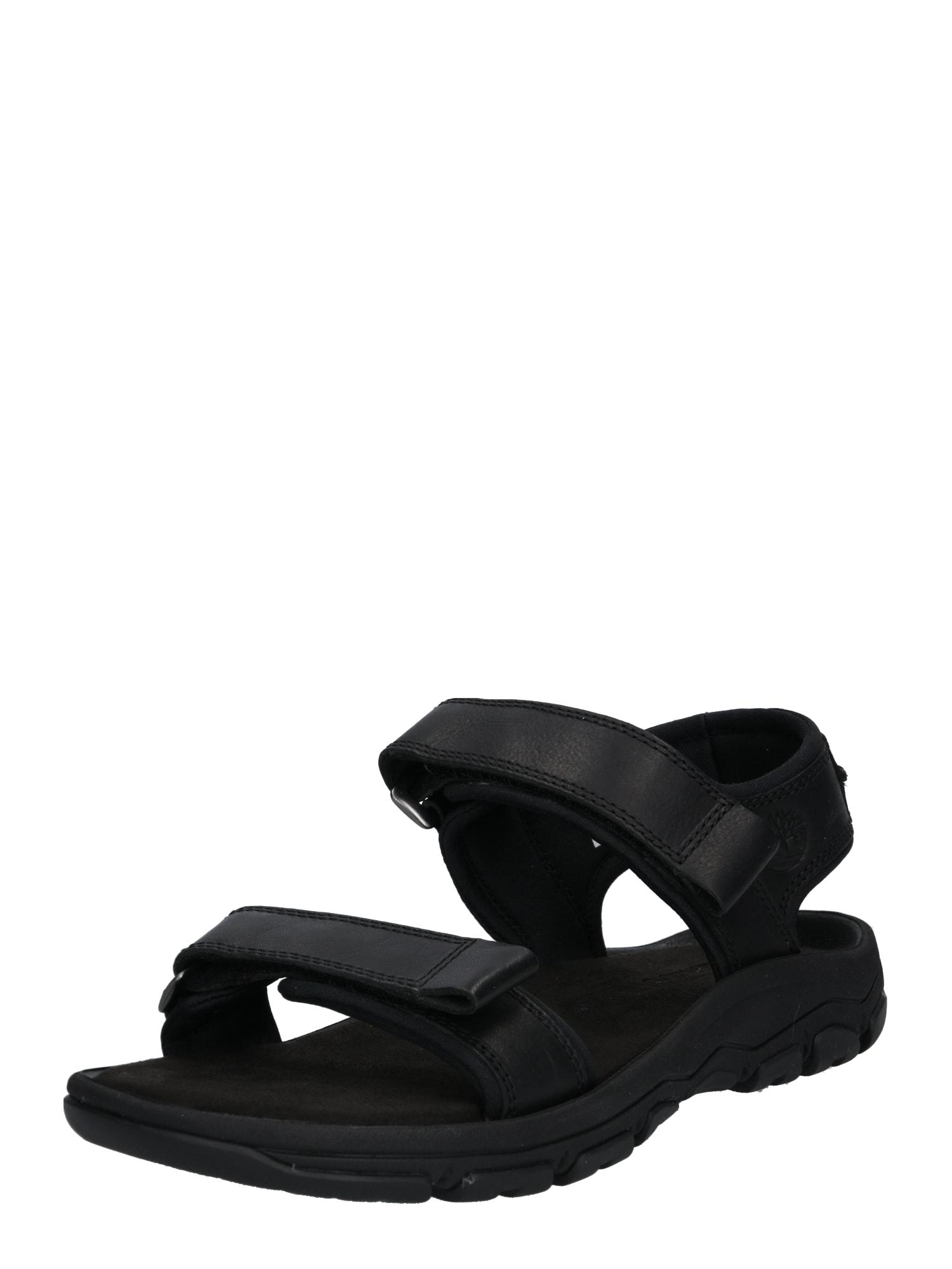 Trekingové sandály Roslindale 2-Strap černá TIMBERLAND