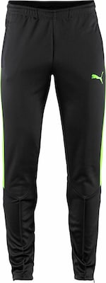 PUMA Funktionshose 'IT EVO TRAINING PANT'