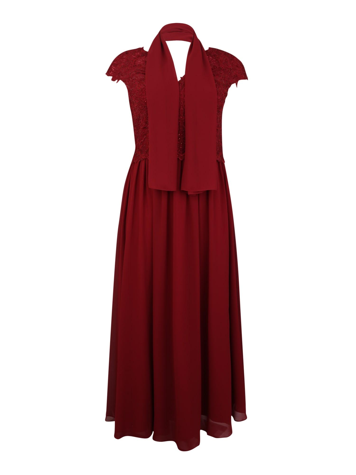 My Mascara Curves Kokteilové šaty 'SLEEVE LACE'  vínovo červená