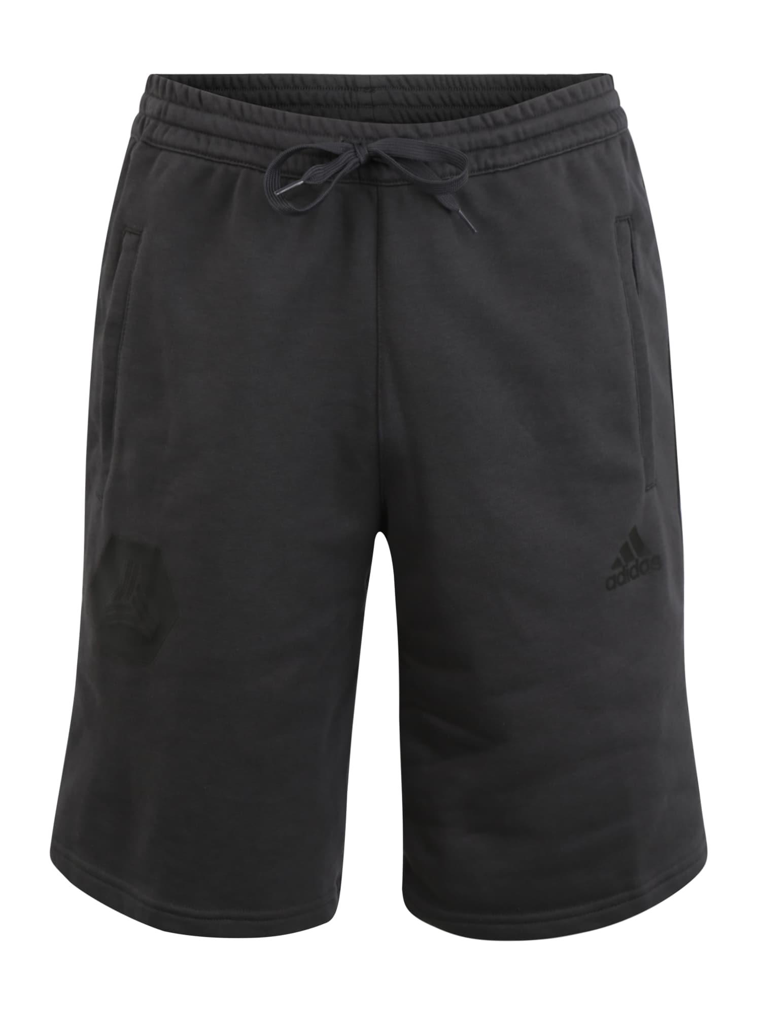 ADIDAS PERFORMANCE Sportinės kelnės 'TAN SW LOGO SHO' tamsiai pilka