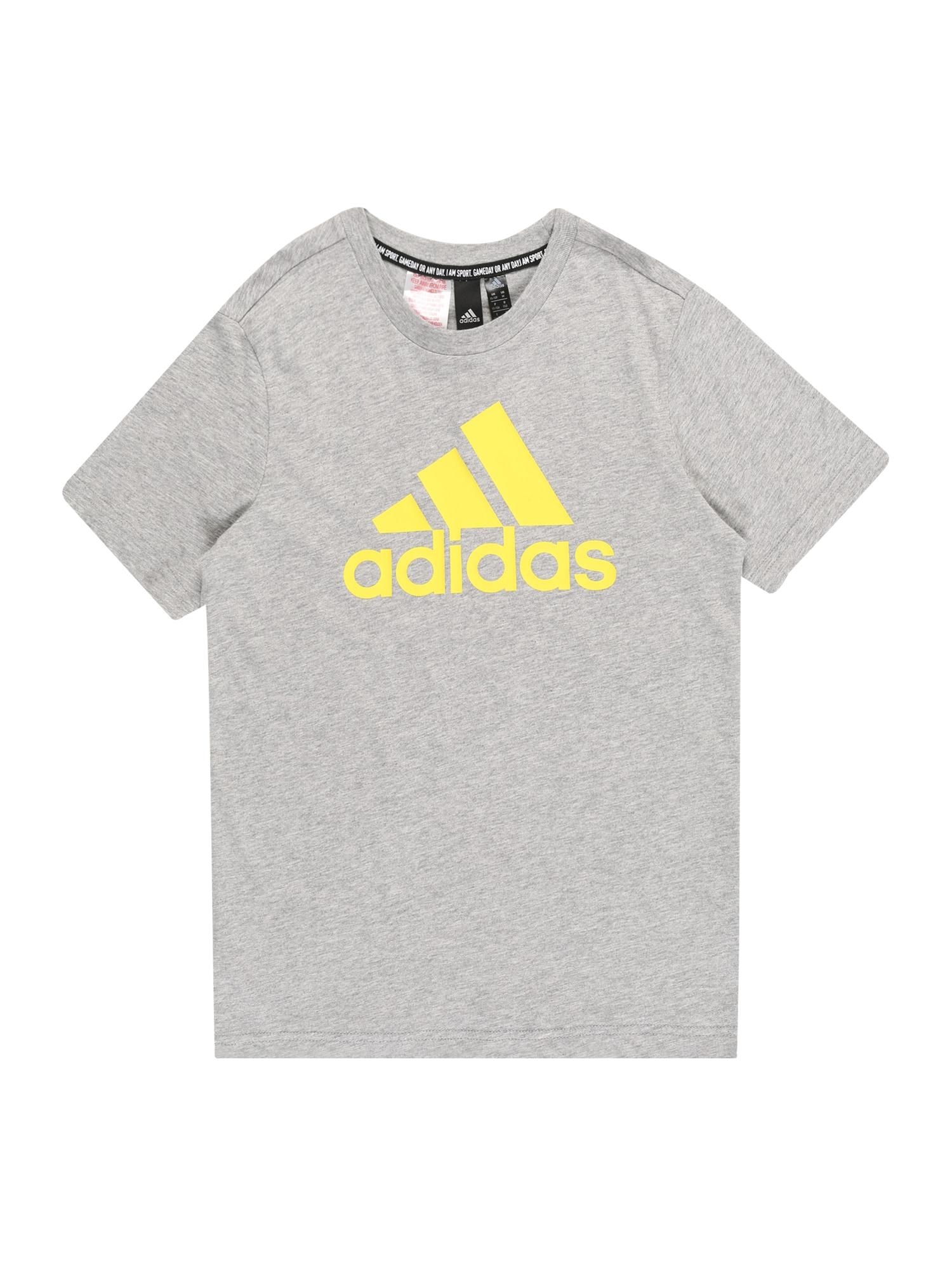 ADIDAS PERFORMANCE Sportiniai marškinėliai 'YB MH BOS' pilka