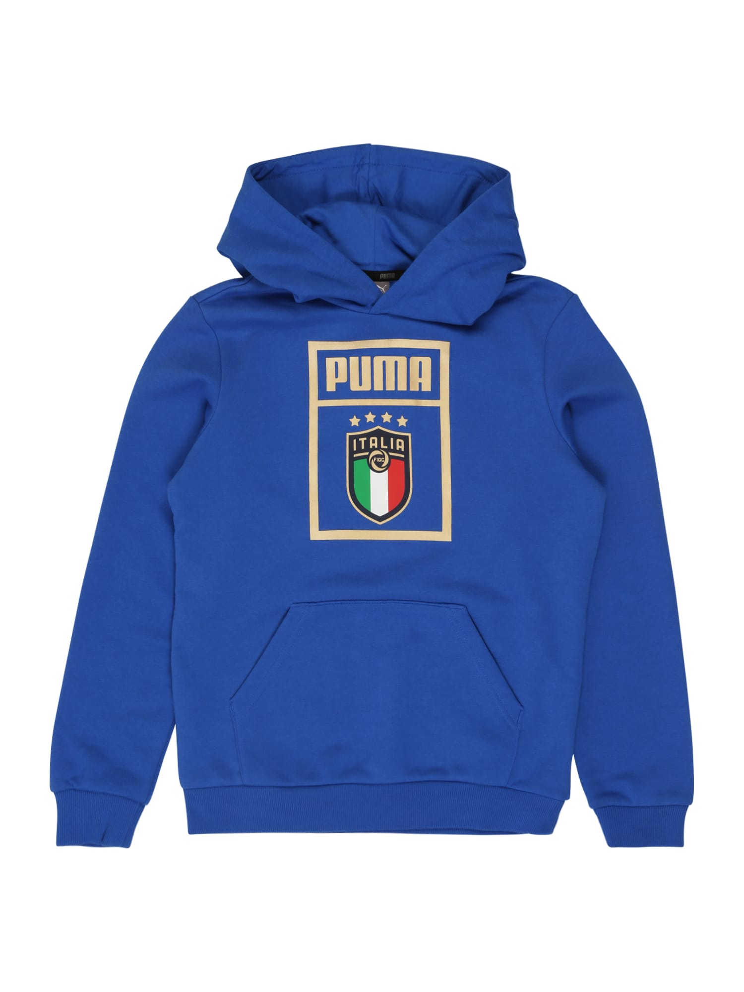 PUMA Sportinio tipo megztinis 'FIGC PUMA DNA Hoody Jr' mėlyna