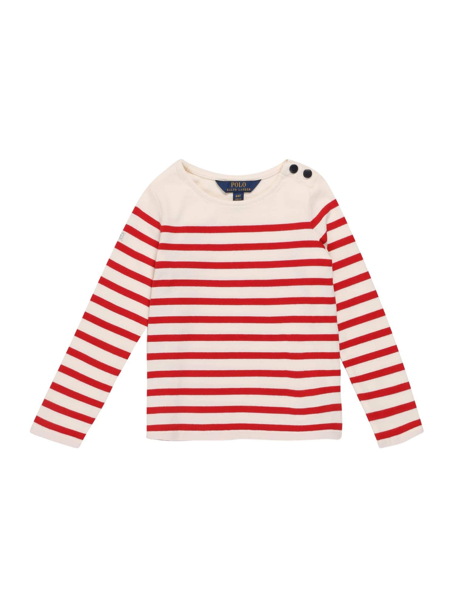 POLO RALPH LAUREN Marškinėliai raudona / balta