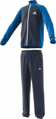ADIDAS PERFORMANCE Trainingsanzug 'YOUNG BOYS TRACK SUIT ENTRY CH'