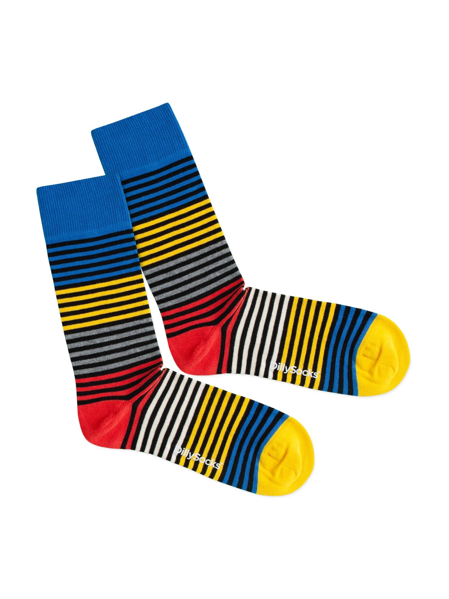 DillySocks Kojinės 'Four Color Ring' mišrios spalvos