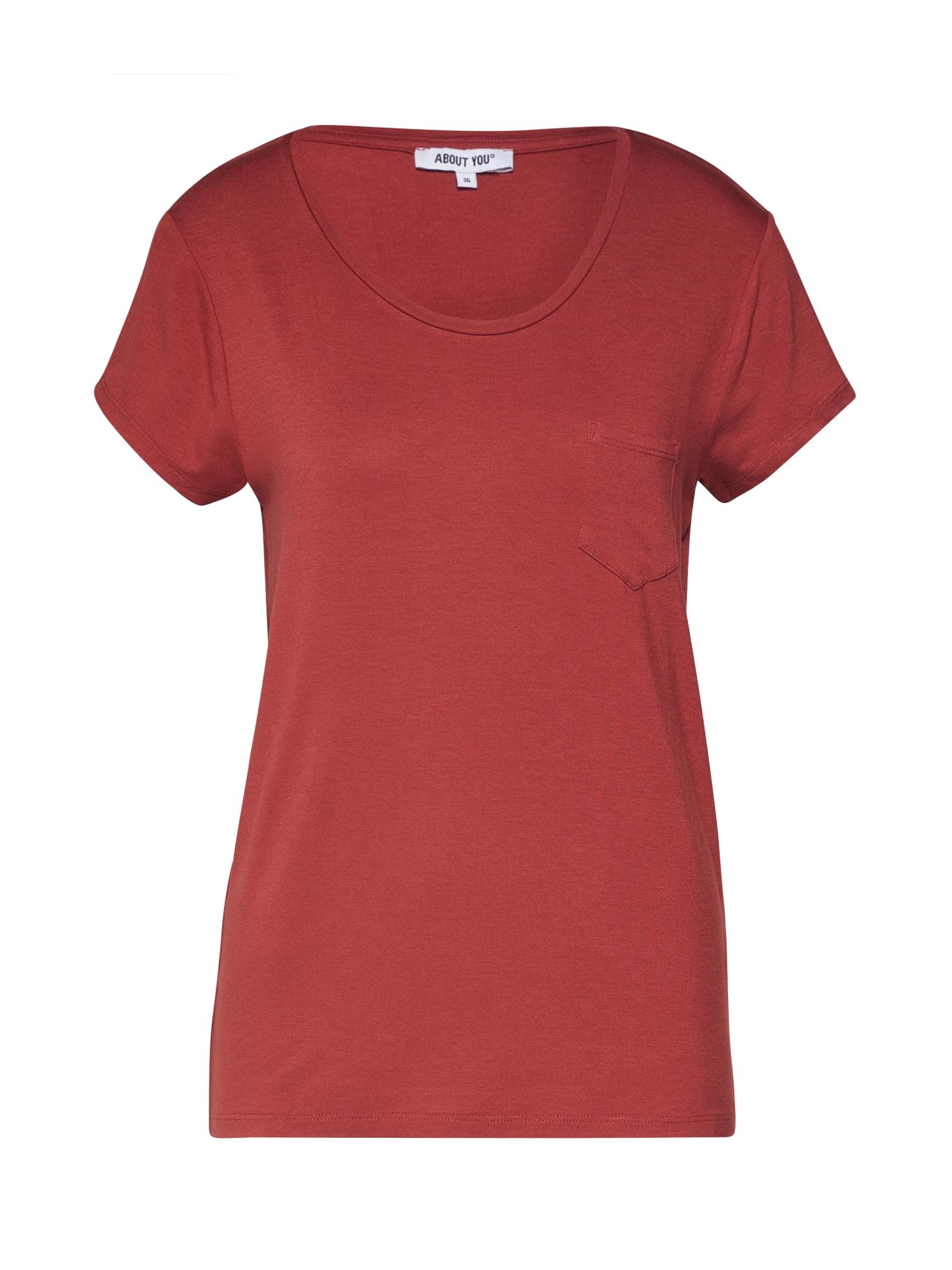 ABOUT YOU Marškinėliai 'Darina' rūdžių raudona