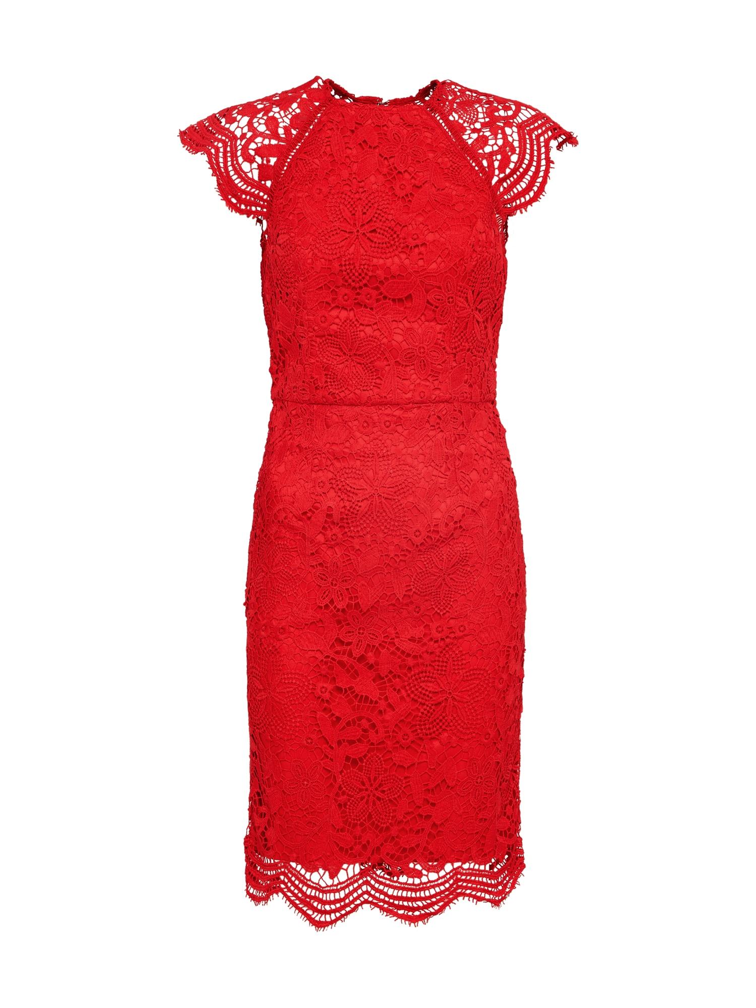 Chi Chi London Kokteilinė suknelė raudona