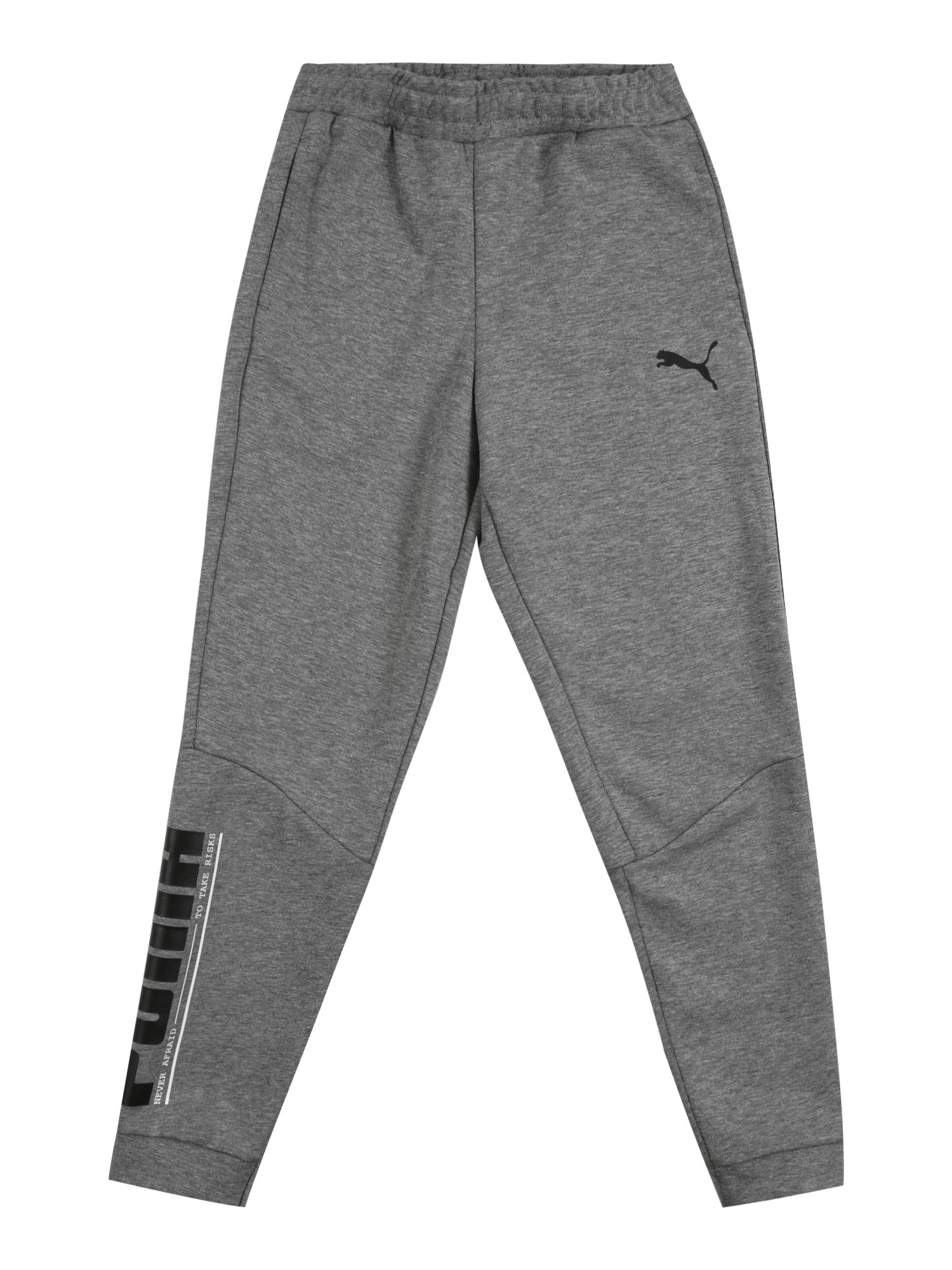 PUMA Sportinės kelnės pilka