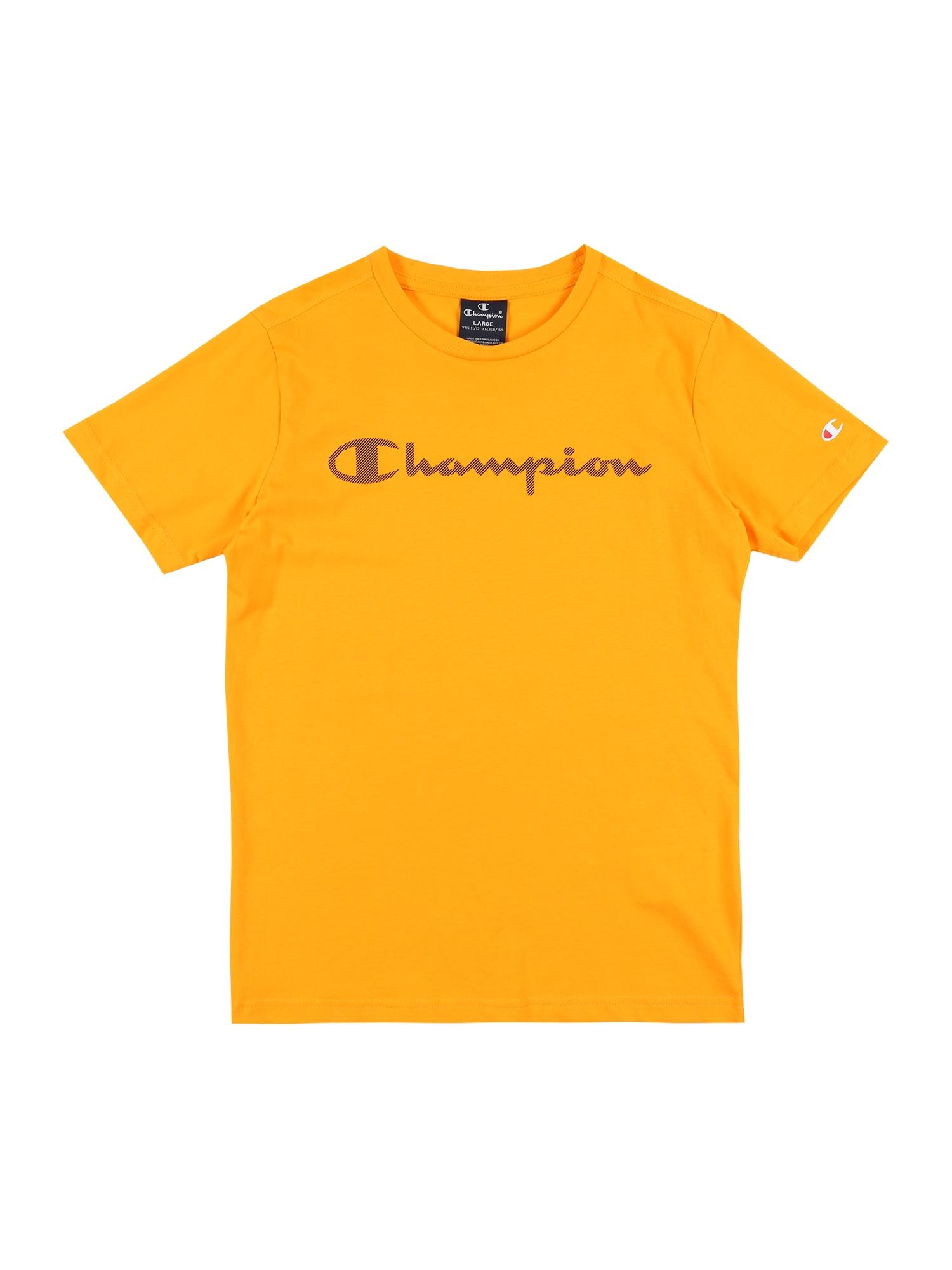 Champion Authentic Athletic Apparel Marškinėliai