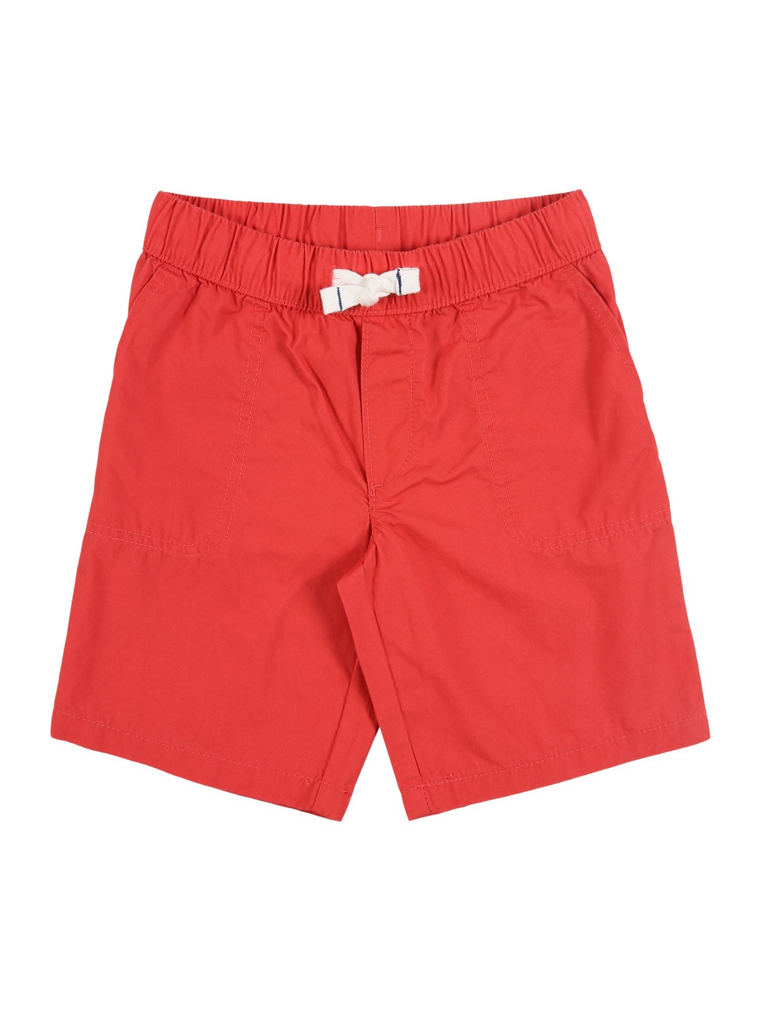 Carter's Kelnės 'S20 red op wov short' raudona