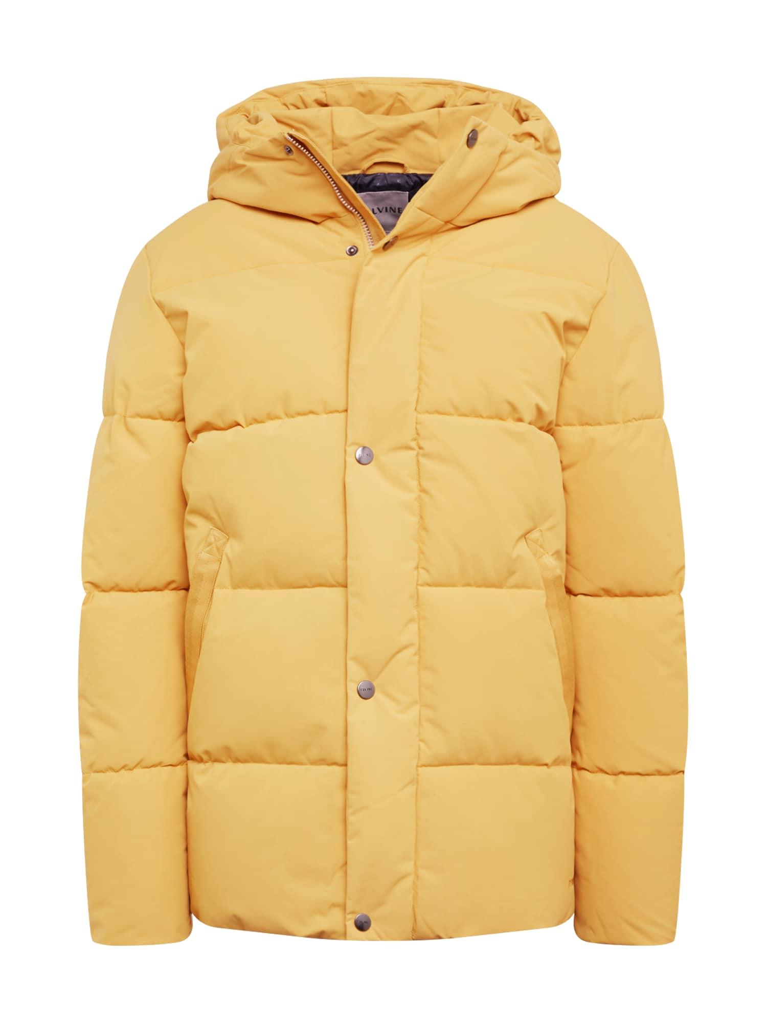 elvine Žieminė striukė 'Bror' geltona