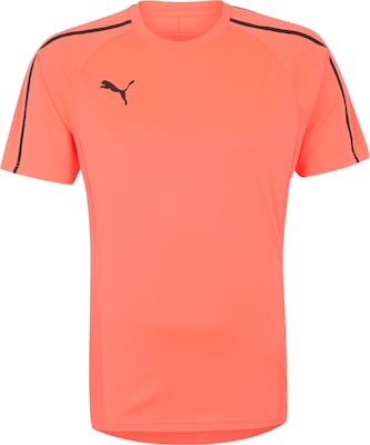 PUMA Trainings-Shirt 'Evotrg'