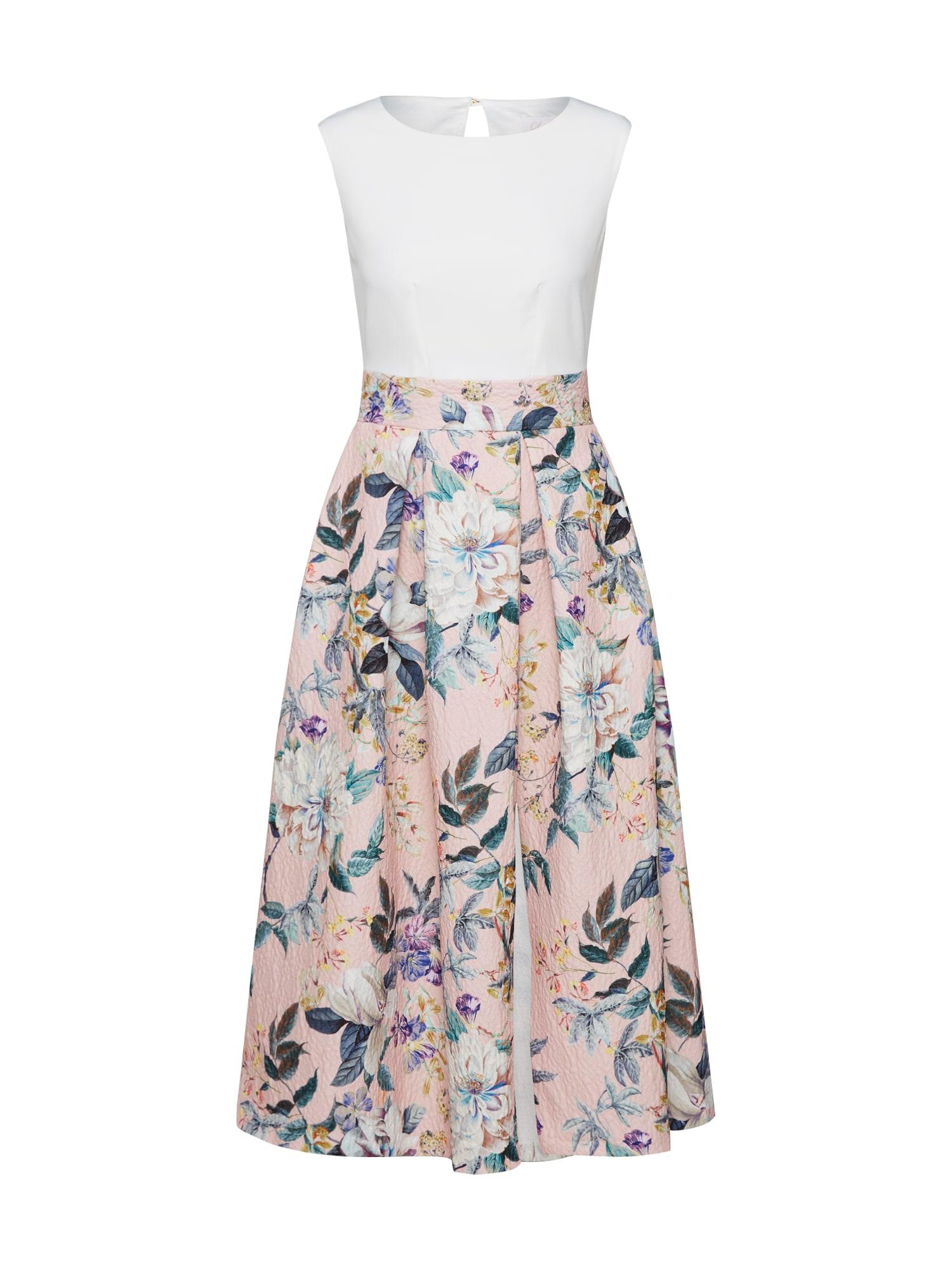 Closet London Kokteilinė suknelė 'Closet Gold Pleated Skirt Dress' rožių spalva / balta