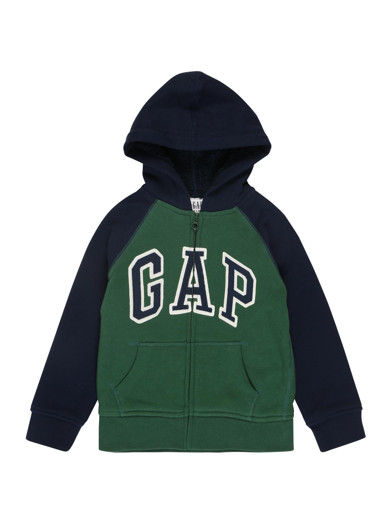 GAP Džemperis 'Cozy Arch Hood' nakties mėlyna / žalia