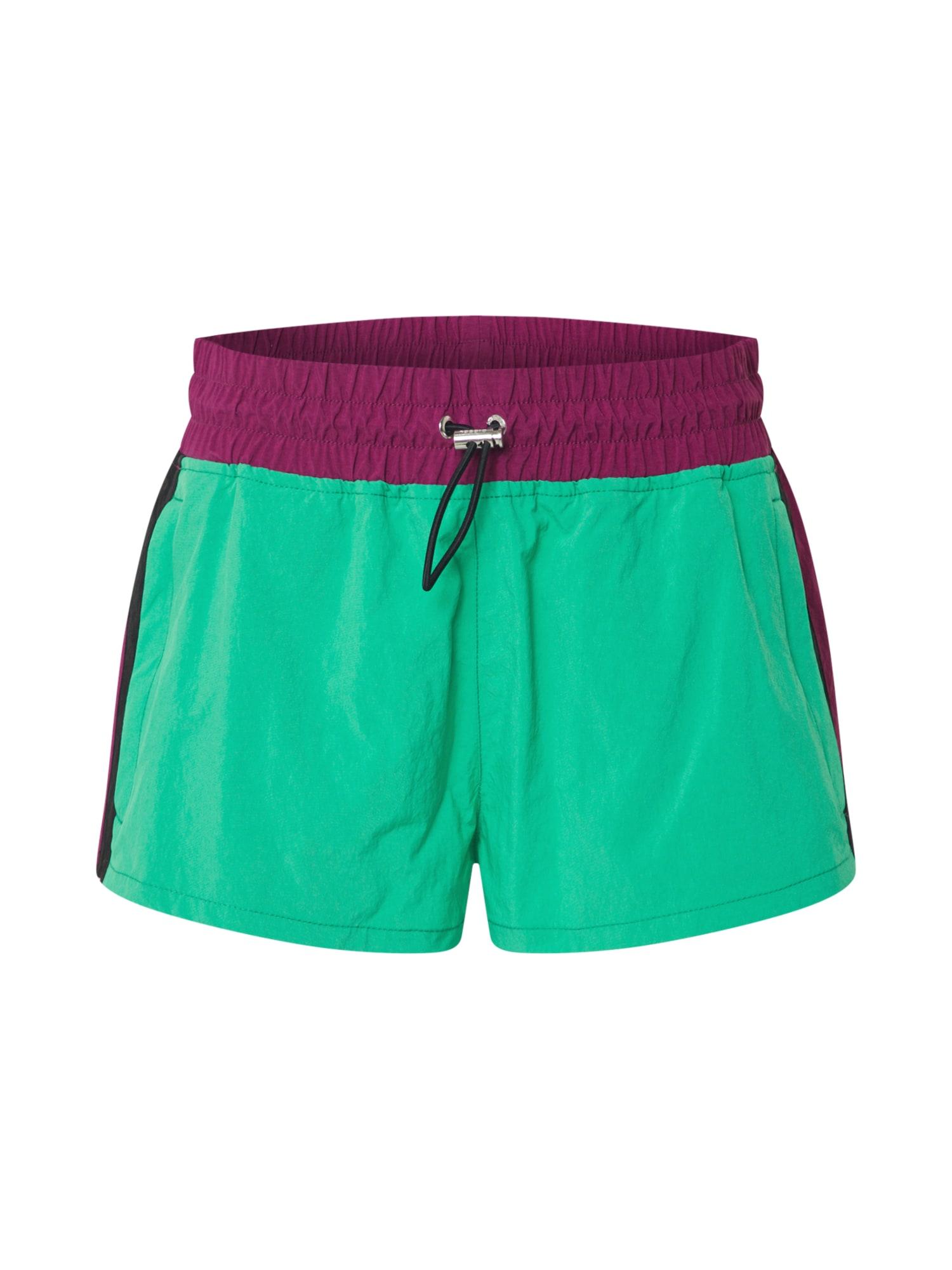 DIESEL Kelnės 'FLYNN' žalia / purpurinė