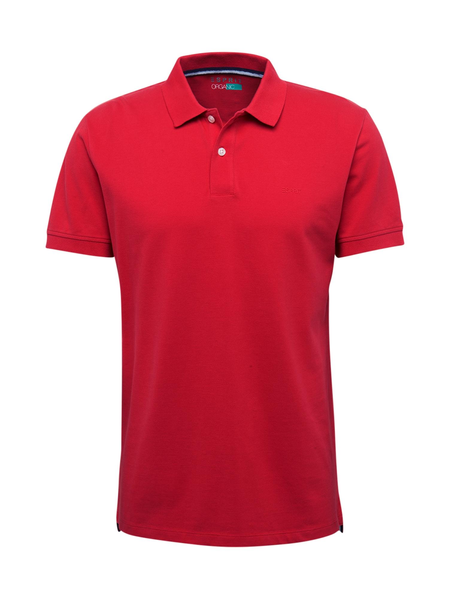 ESPRIT Marškinėliai 'OCS N pi po ss' raudona