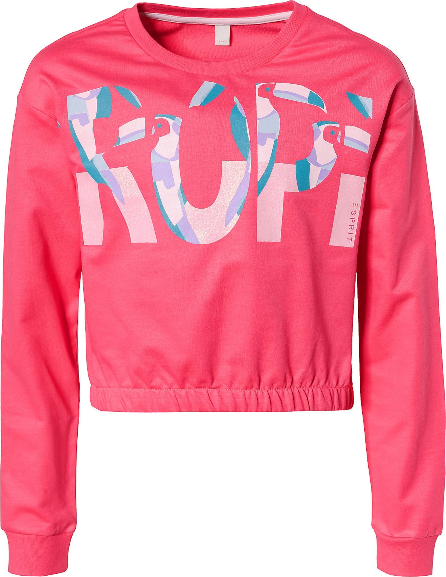 Kinder,  Mädchen,  Kinder Esprit Sweatshirt blau, braun, grau,  grün, indigo, pink, weiß | 03663760940299