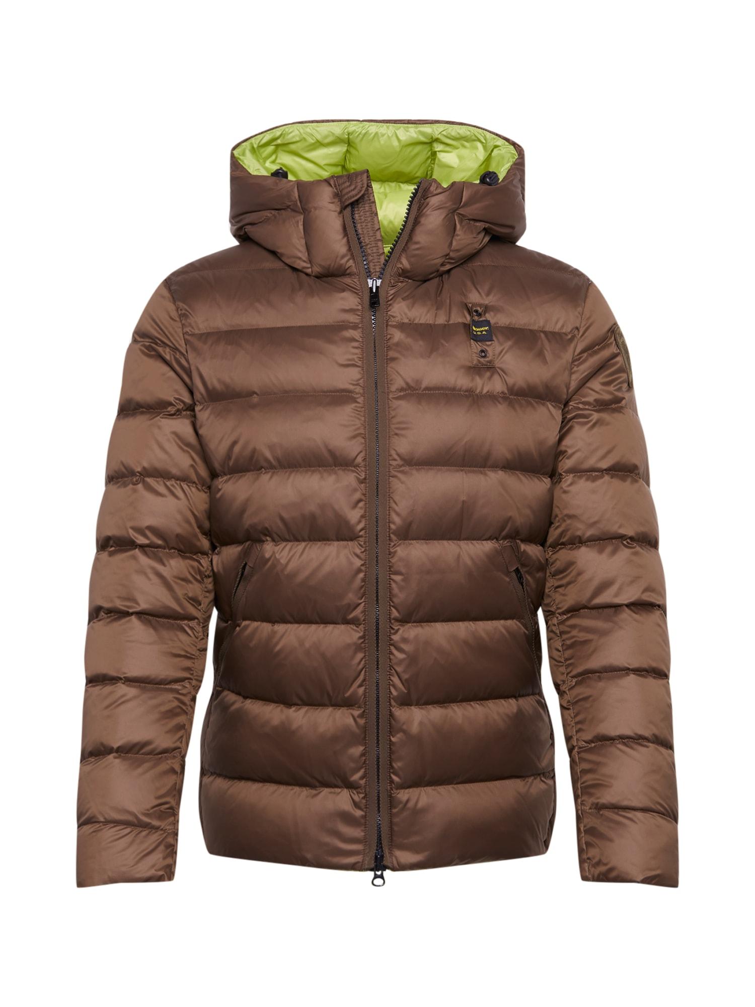 Blauer.USA Žieminė striukė ruda